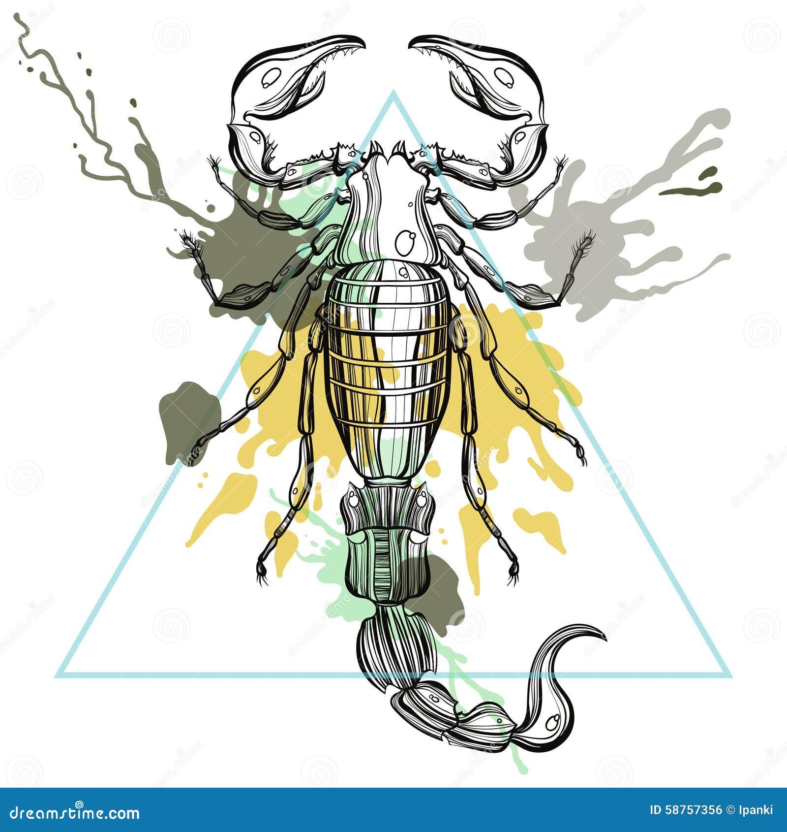 Zentangle Stilisierte Skorpion Im Dreieckrahmen Mit Aquarell Herein