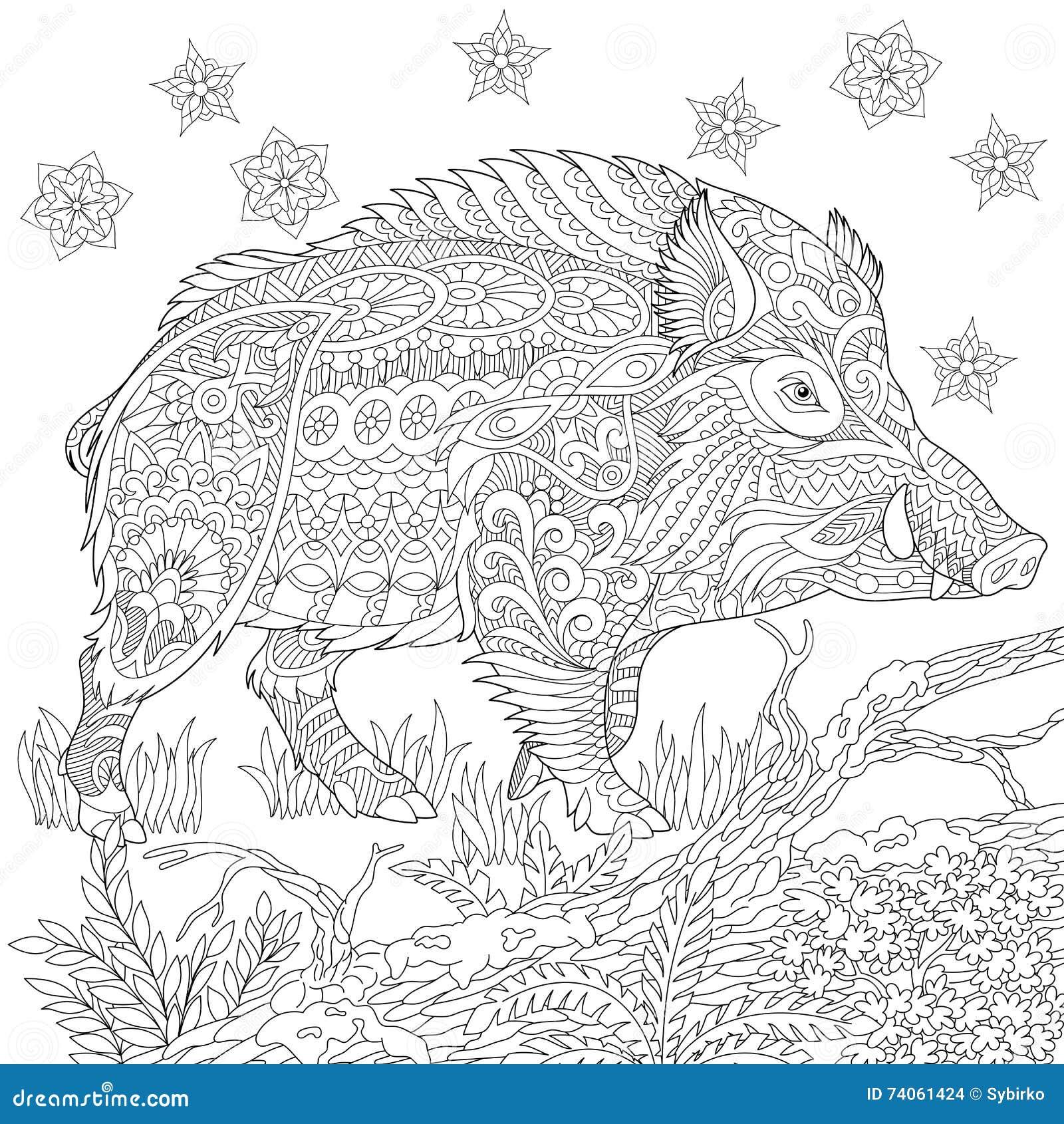 Zentangle a stylis le sanglier illustration de vecteur illustration du herbe noir 74061424 - Coloriage de sanglier ...