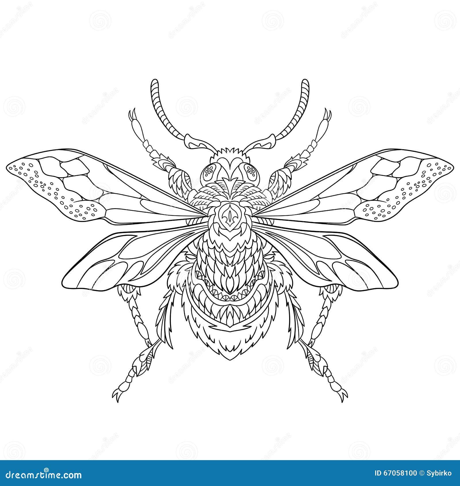 Zentangle Stylized Beetle Insect Stock Vector