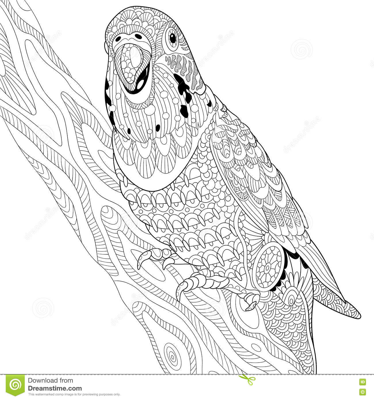 Zentangle Stylized Budgie Parrot Stock Vector