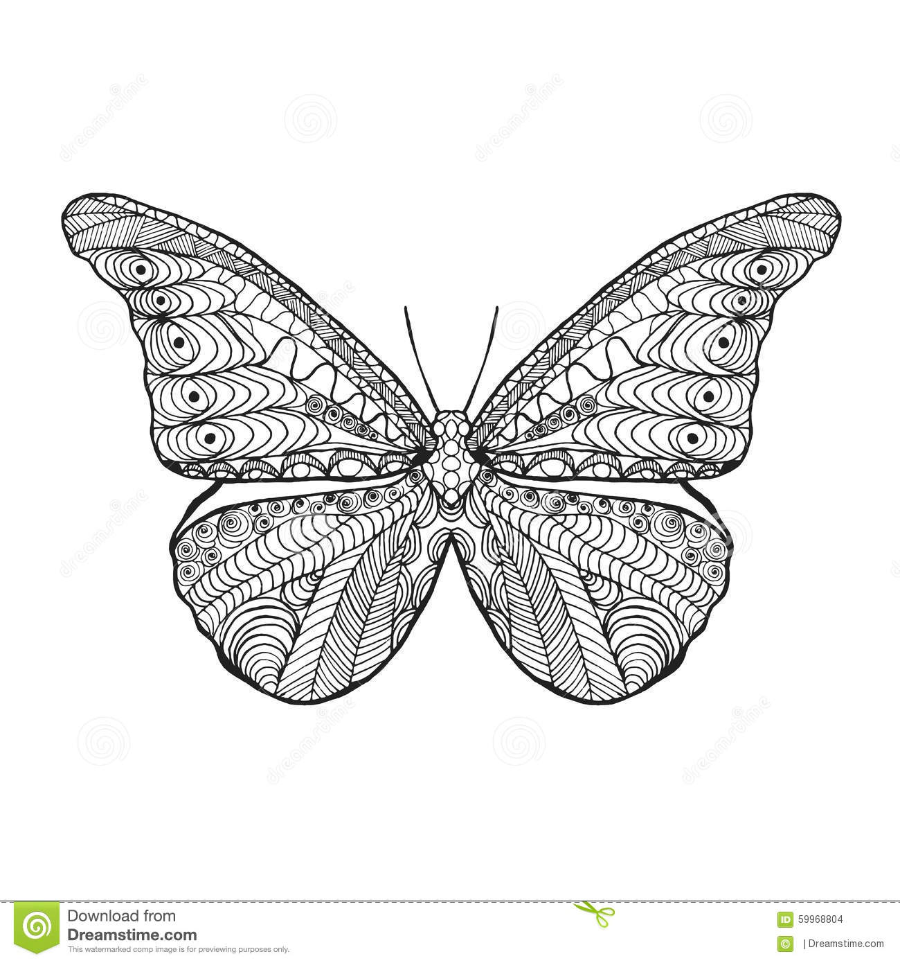 Vlinders Kleurplaat Volwassene Zentangle Stylized Butterfly Stock Vector Image 59968804