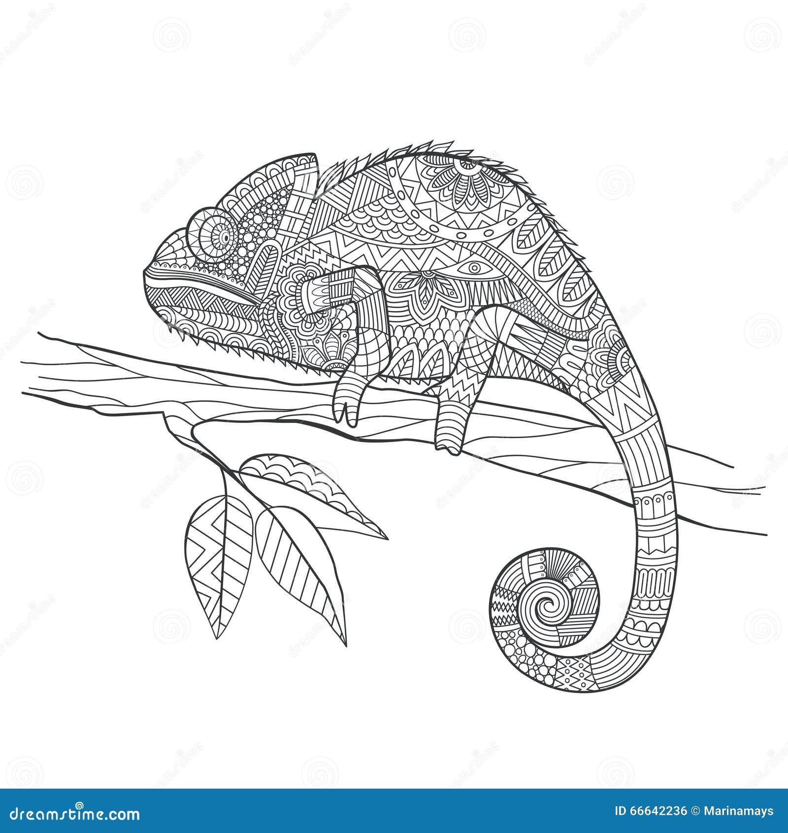 Zentangle Stylized Chameleon Lizard Hand Drawn Vector