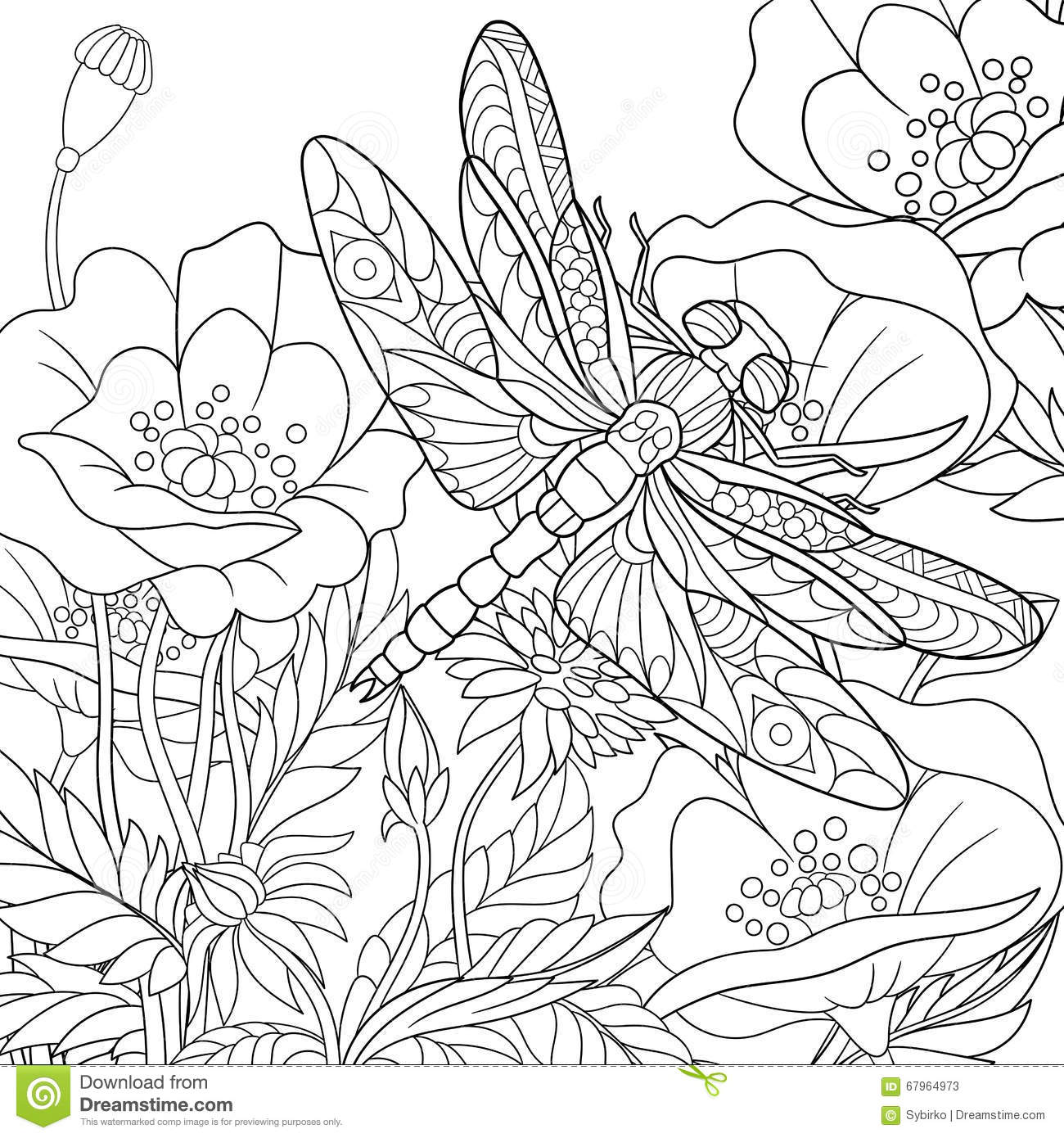 Zentangle Stylized Dragonfly Insect Stock Vector Image 67964973