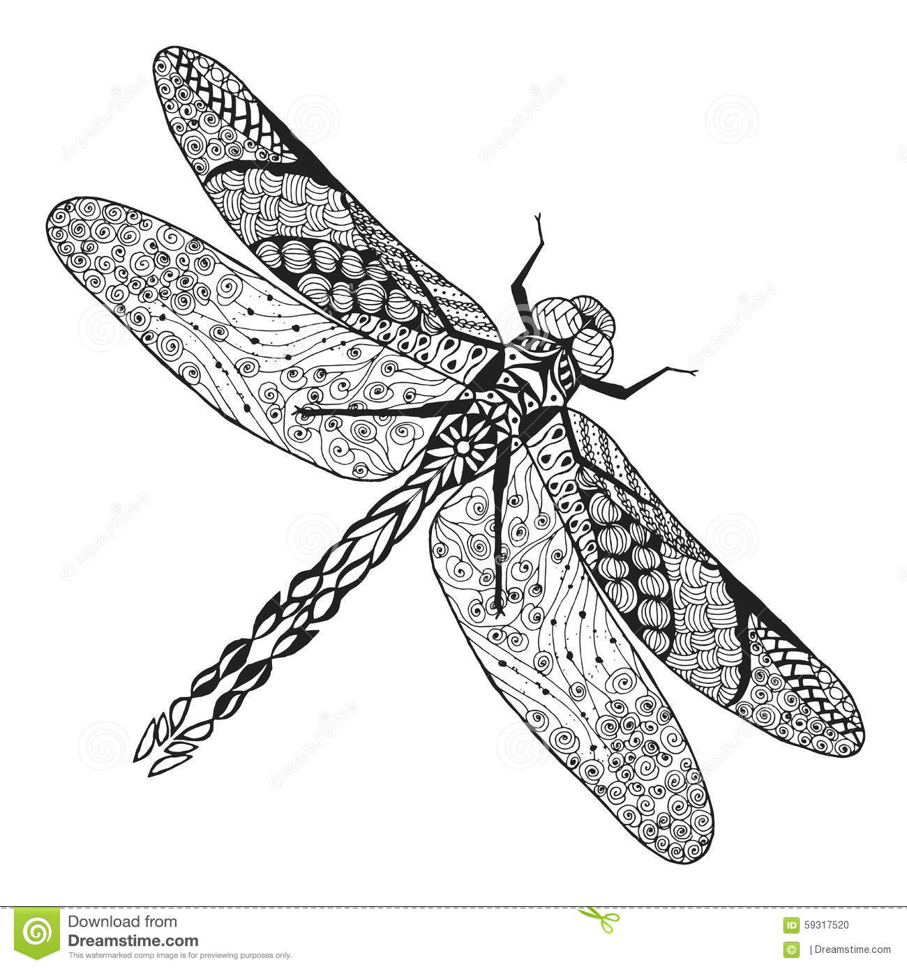 Realistic firefly coloring pages