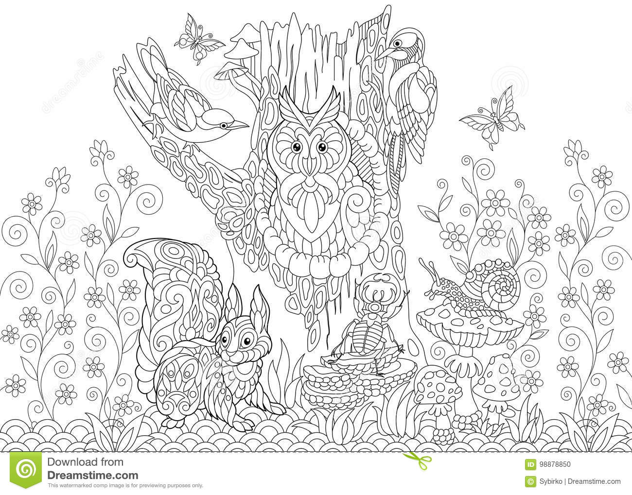 Coloring Page Of Forest Animals Owl Cuckoo Bird Woodpecker Squirrel Snail Stag Beetle Butterflies Freehand Sketch Drawing For Adult Antistress