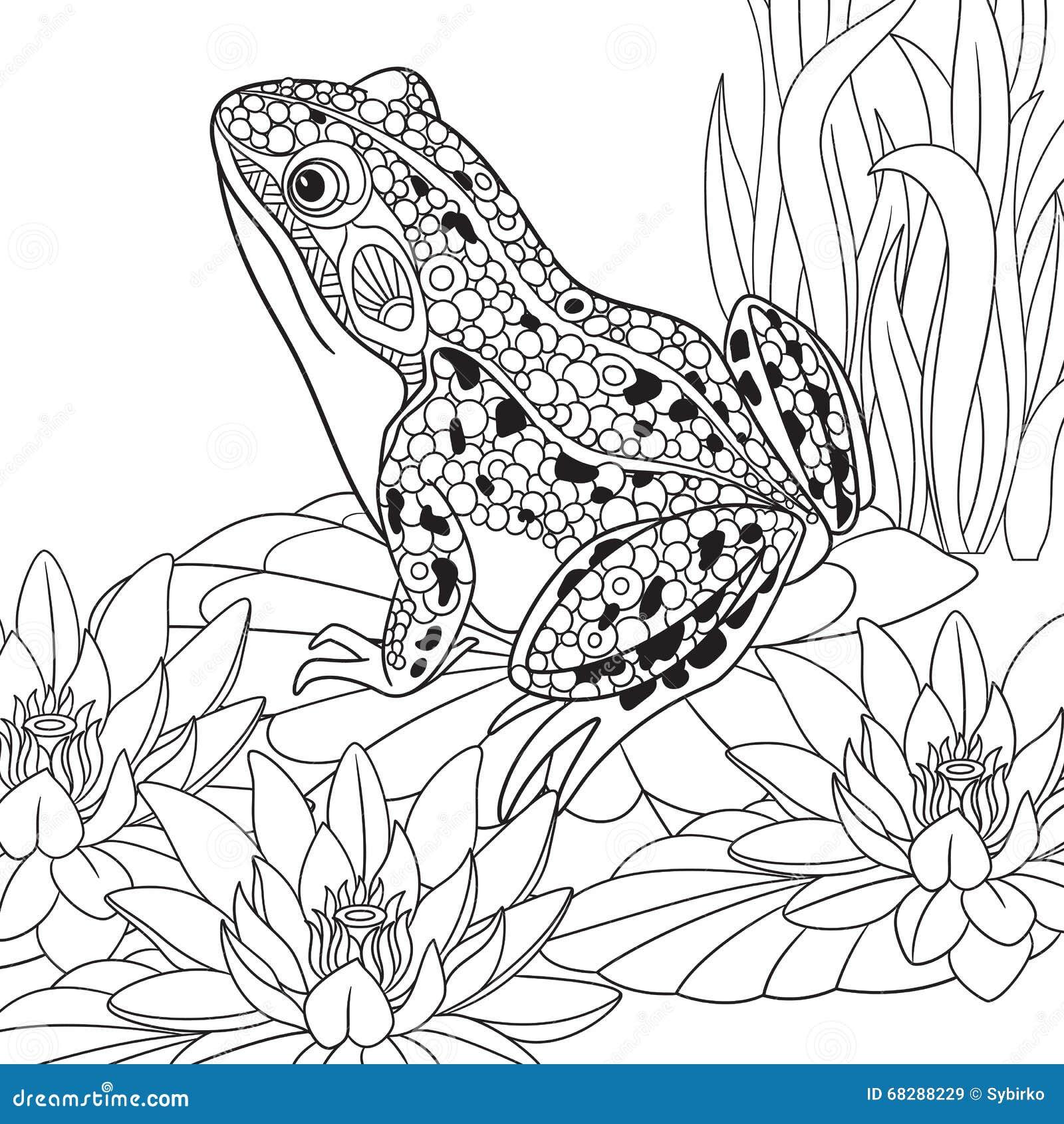 Zentangle stylized frog