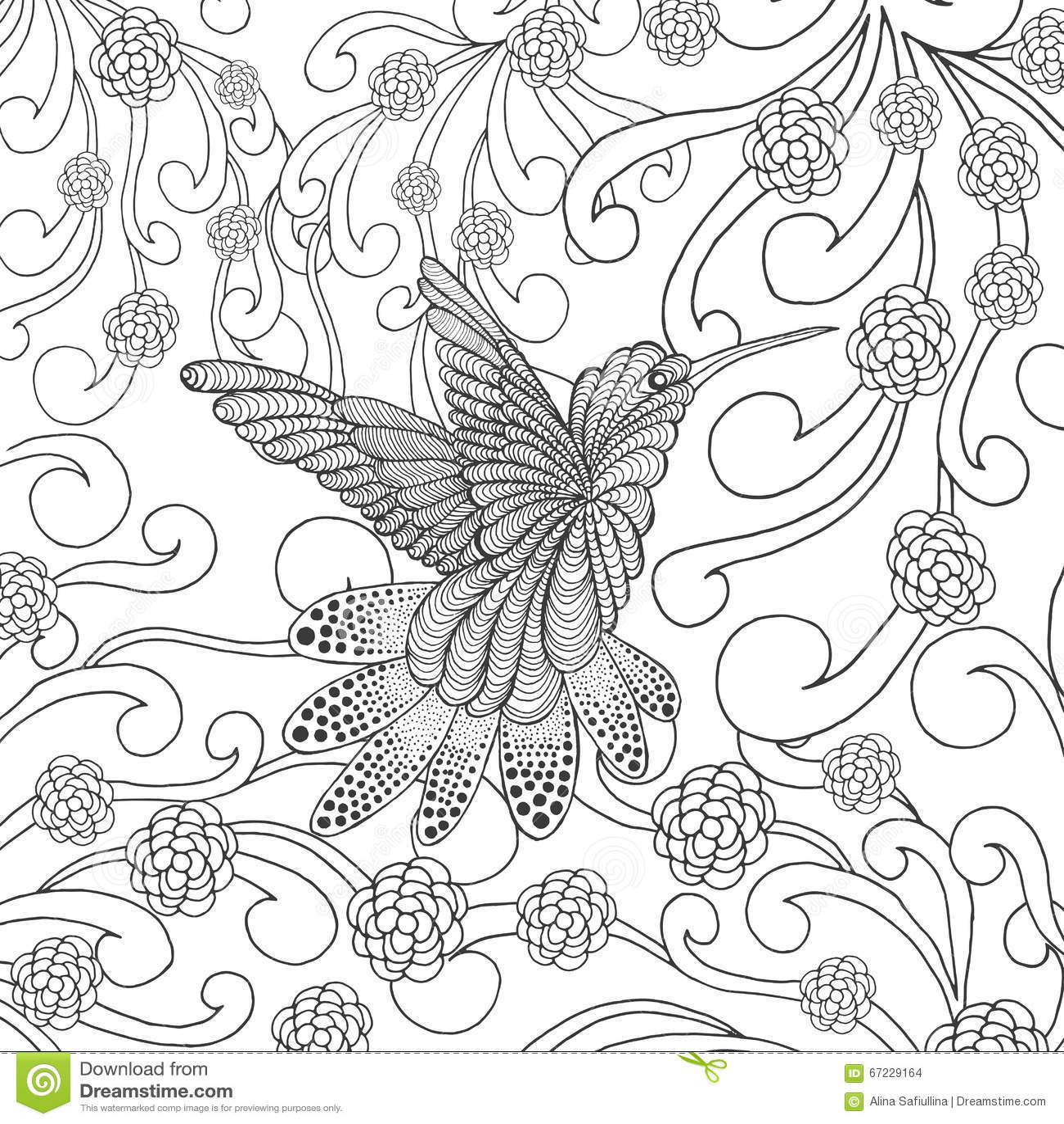 Hummingbird Garden Design Scented Garden And Hummingbird Painted