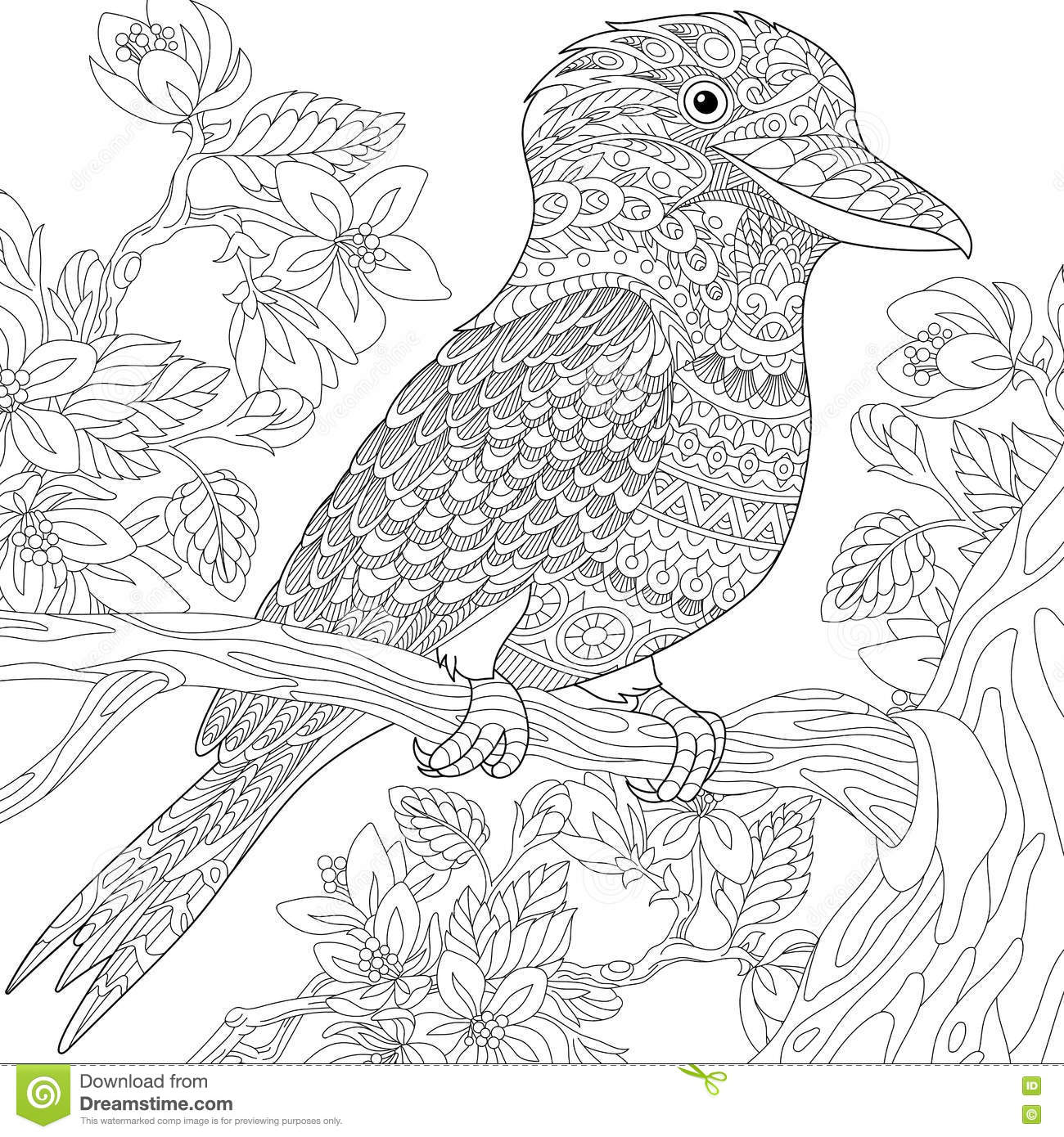Zentangle Stylized Kookaburra Bird