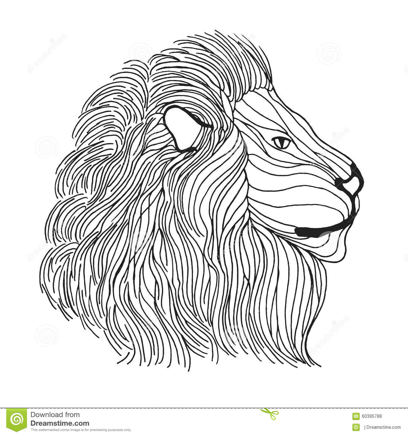 zentangle stylized lion head sketch for tattoo or t shirt stock
