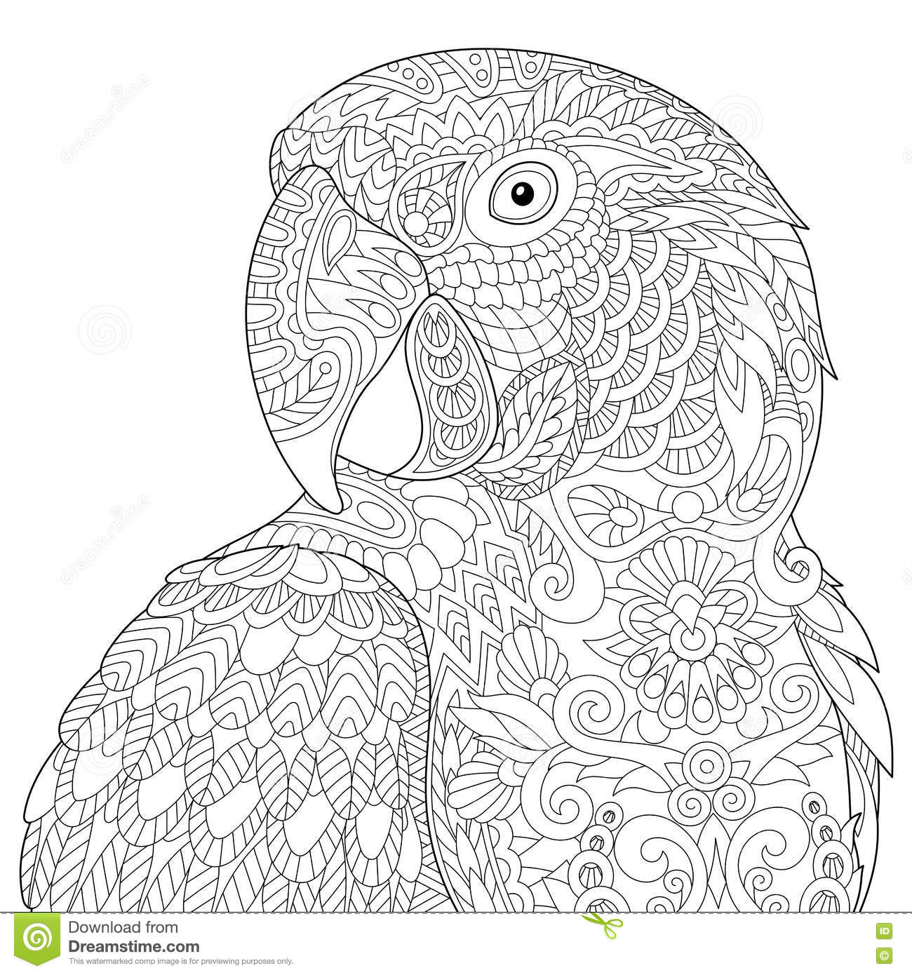 zentangle stylized macaw stock vector image 78280944