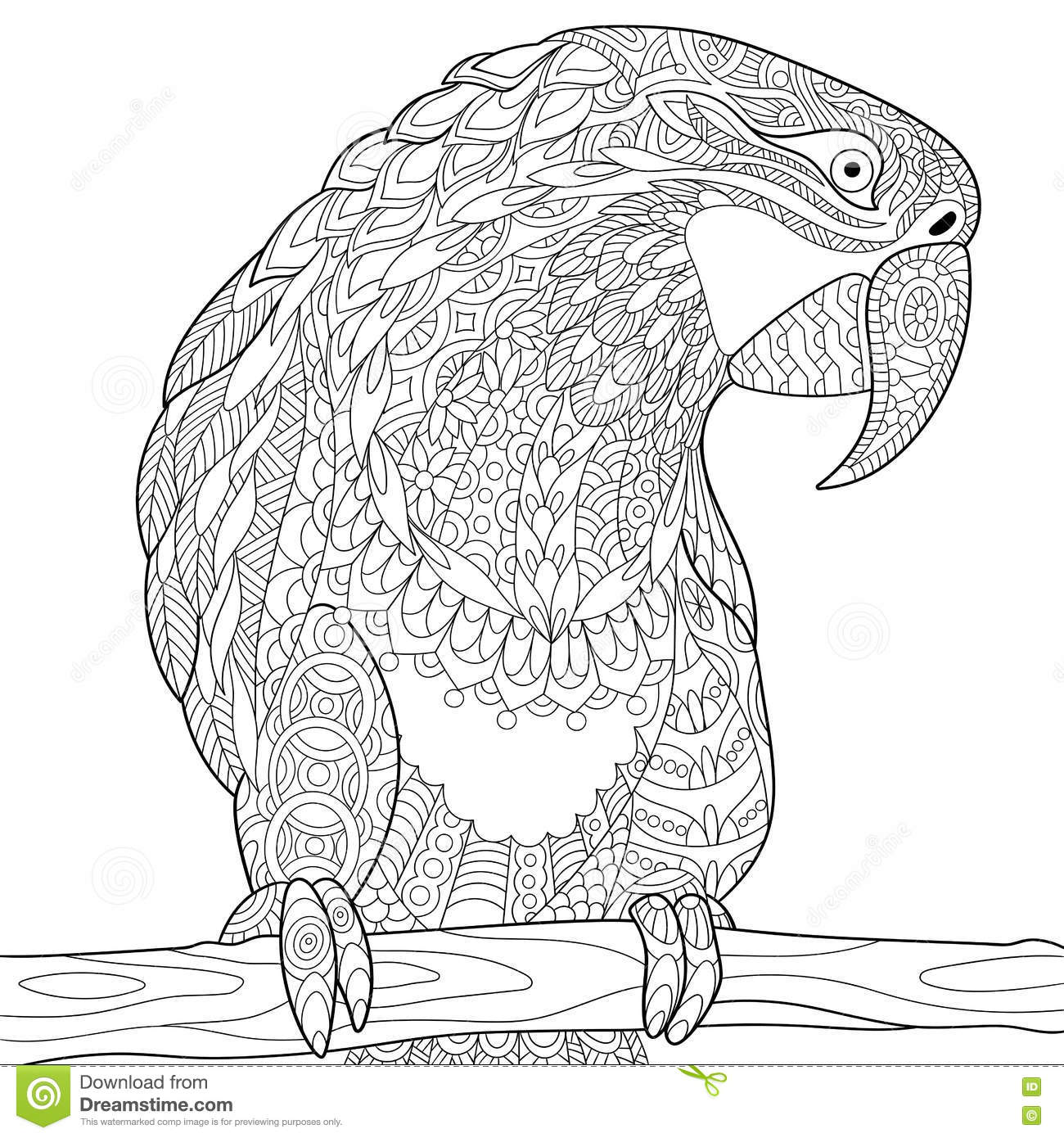 Zentangle Stylized Parrot Macaw Stock Vector Image