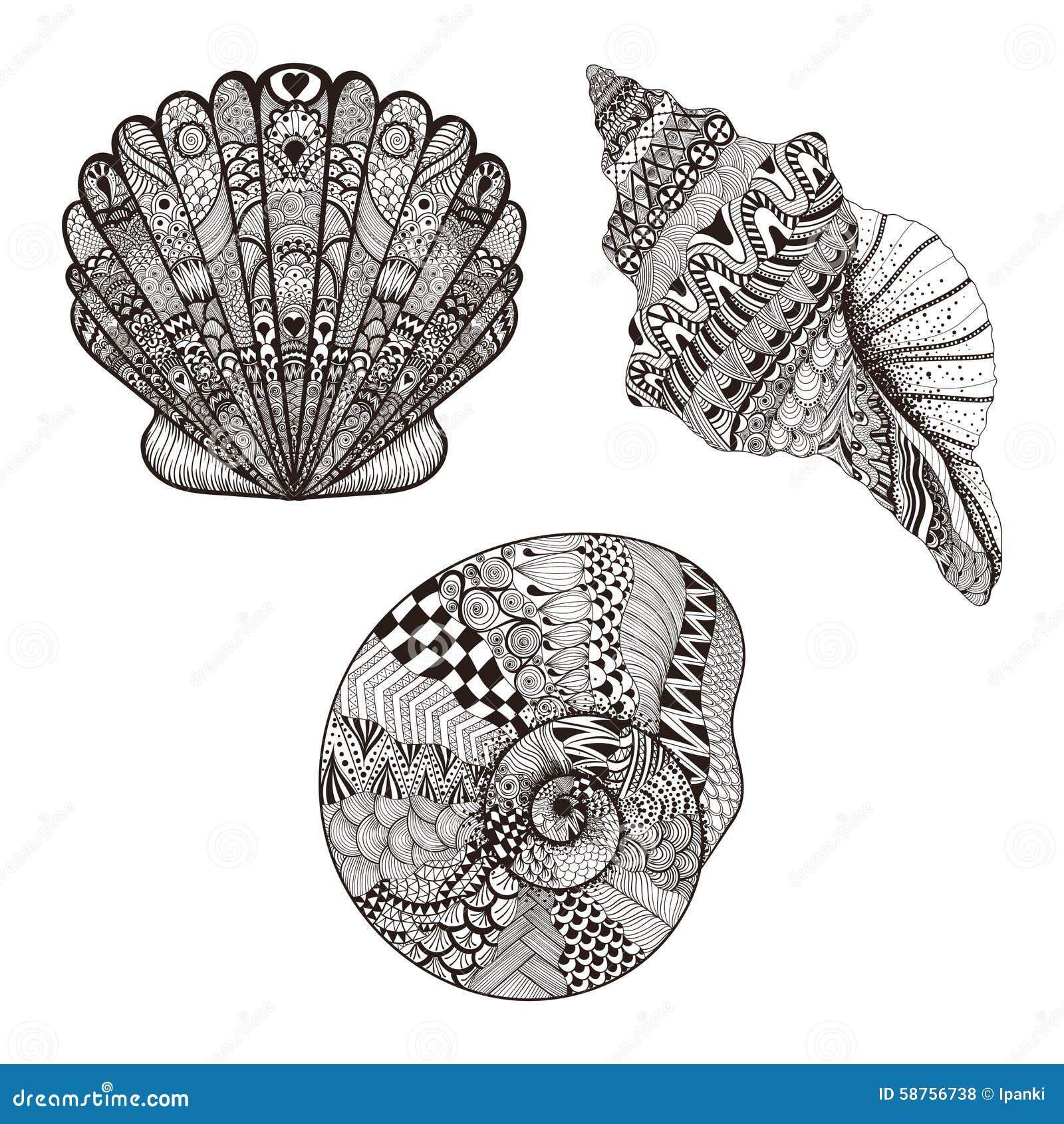 zentangle stylized set seashells hand drawn vector illustration