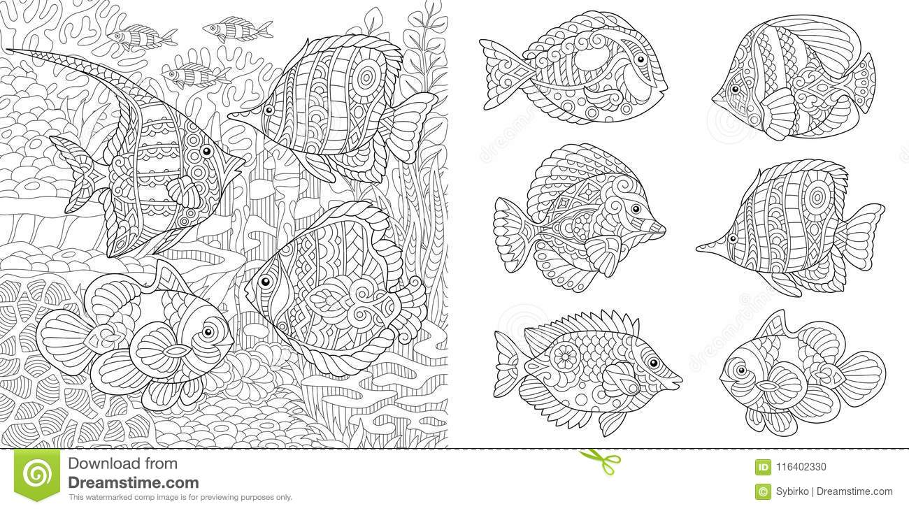Shoal Of Tropical Fishes Different Species Coloring Pages Adult Book Idea Antistress Freehand Sketch Collection