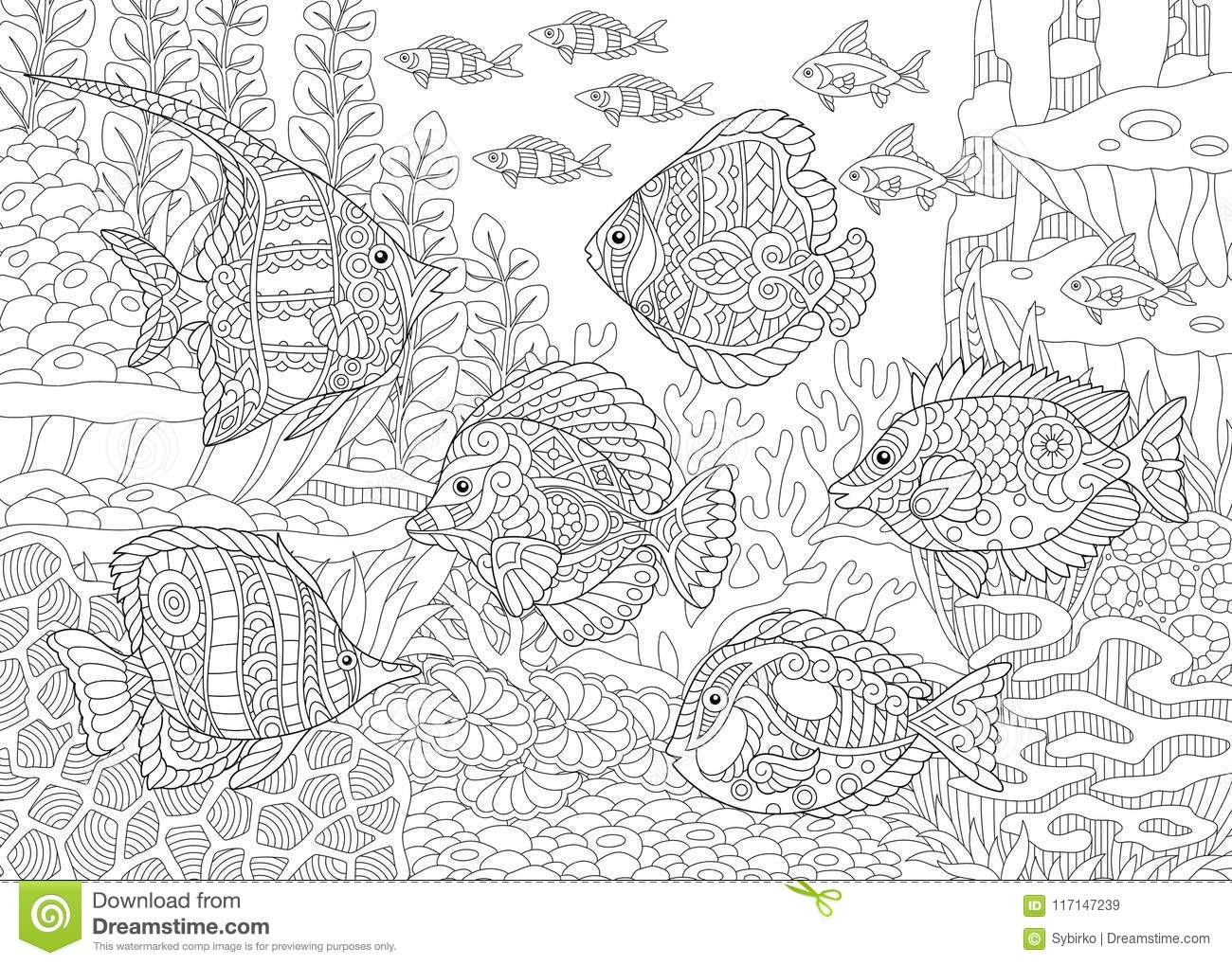 Zentangle tropical fishes stock vector. Illustration of ...