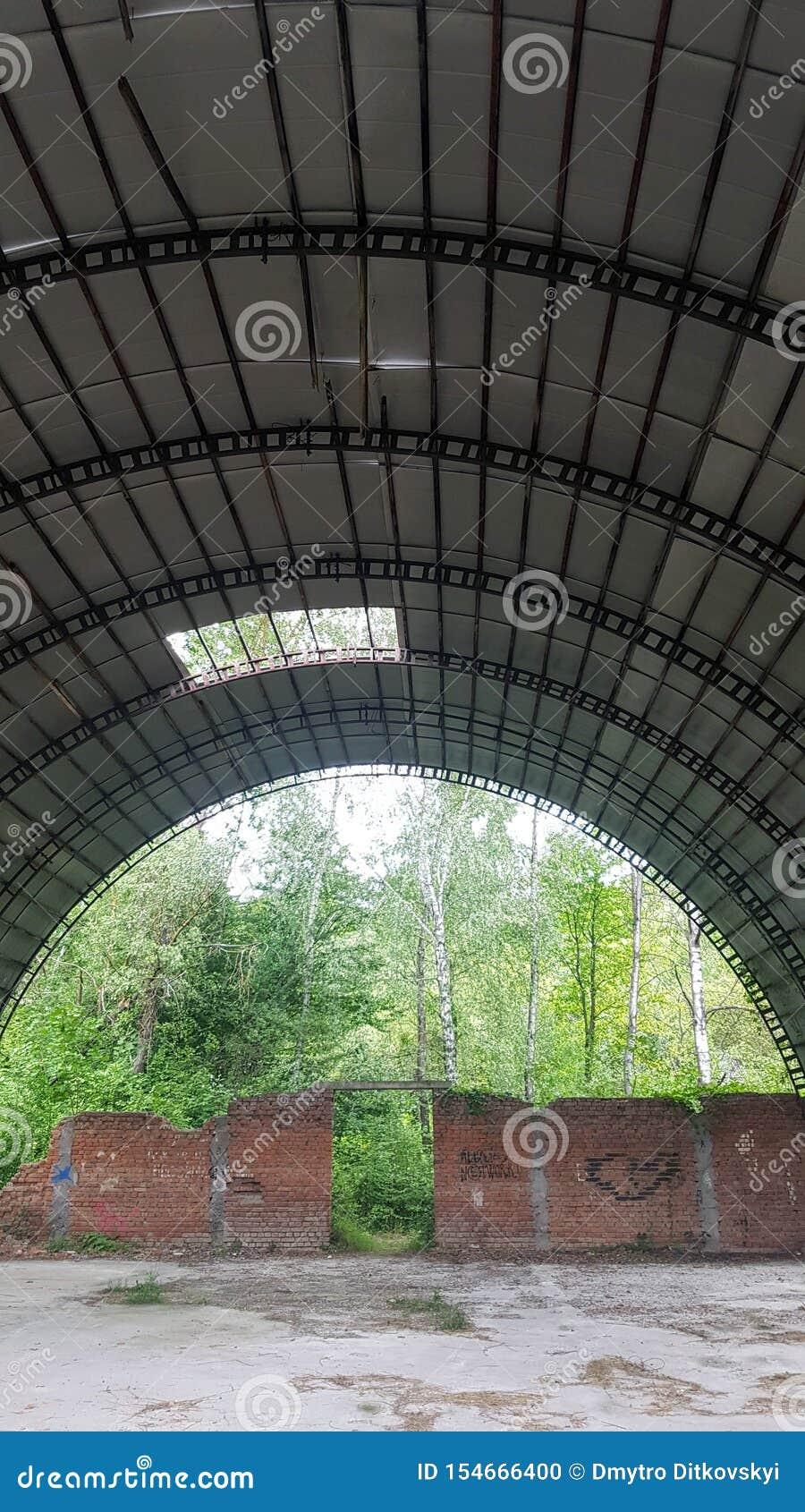 Zerstörter Hangar mit Büschen