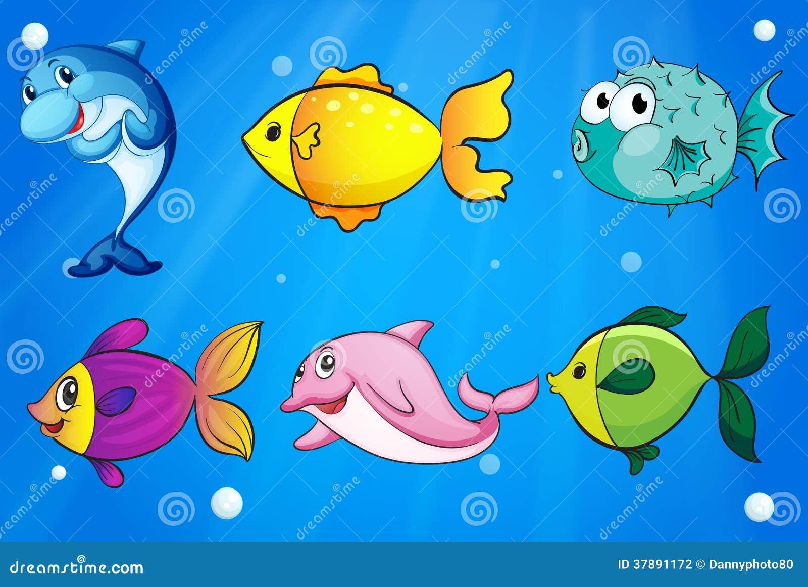 Zes verschillende vissen onder het overzees