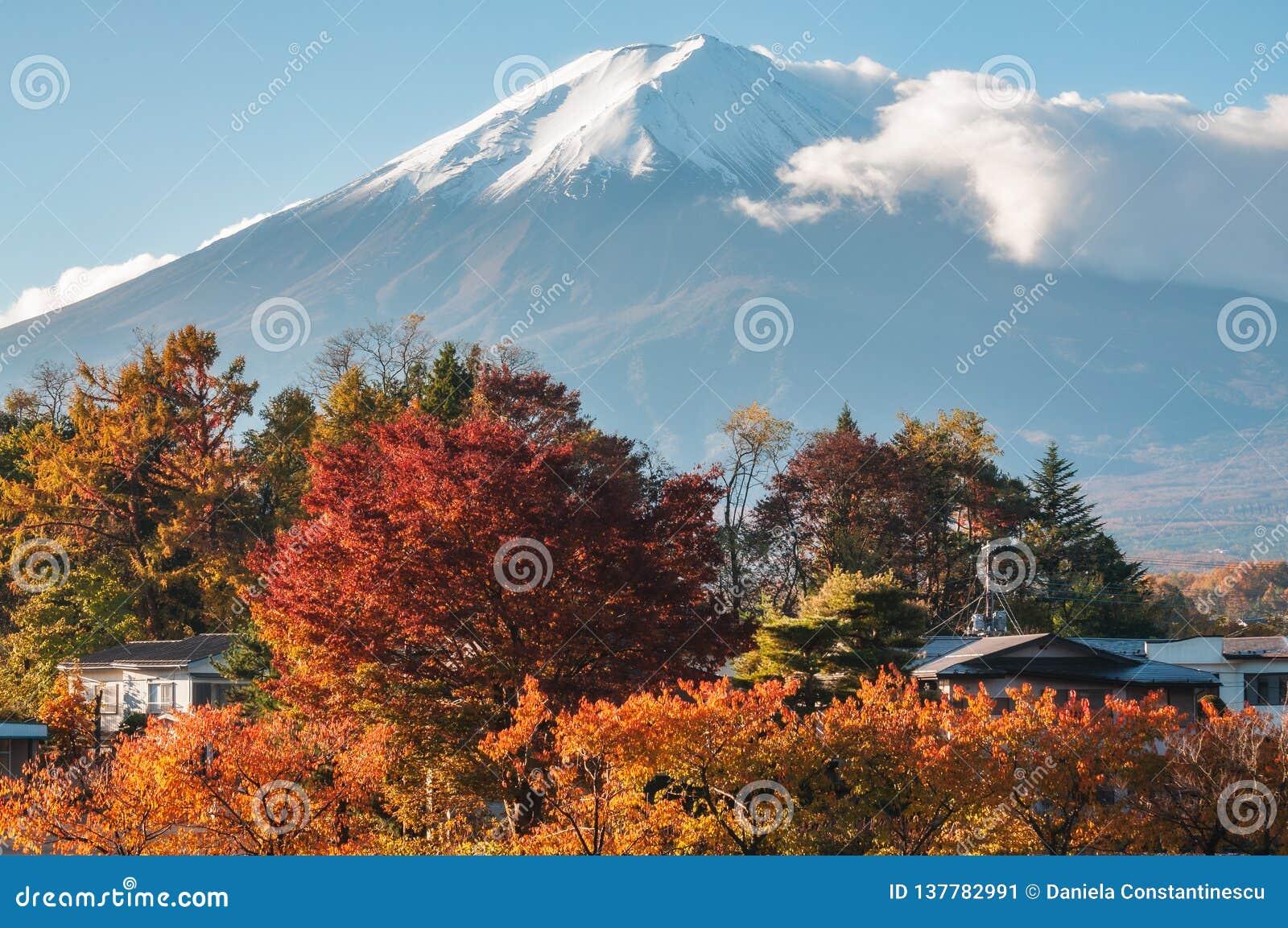 Zet Fuji-Weergeven in de Herfst van een toevlucht in Japan op