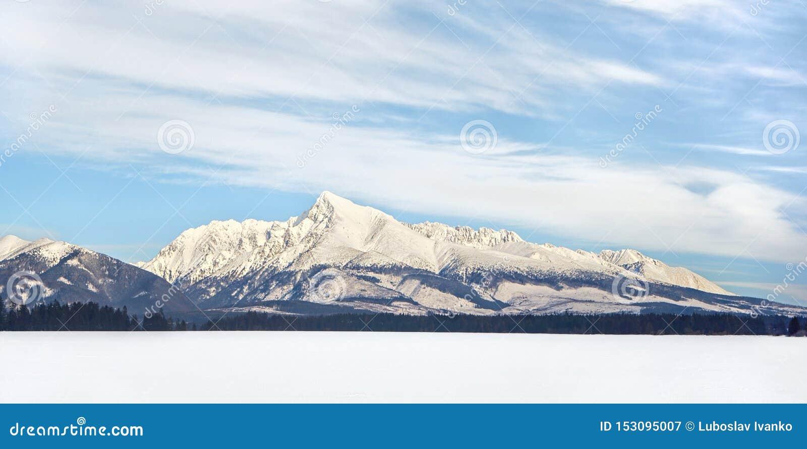 Zet Krivan-Symbool van de winterpanorama van Slowakije op