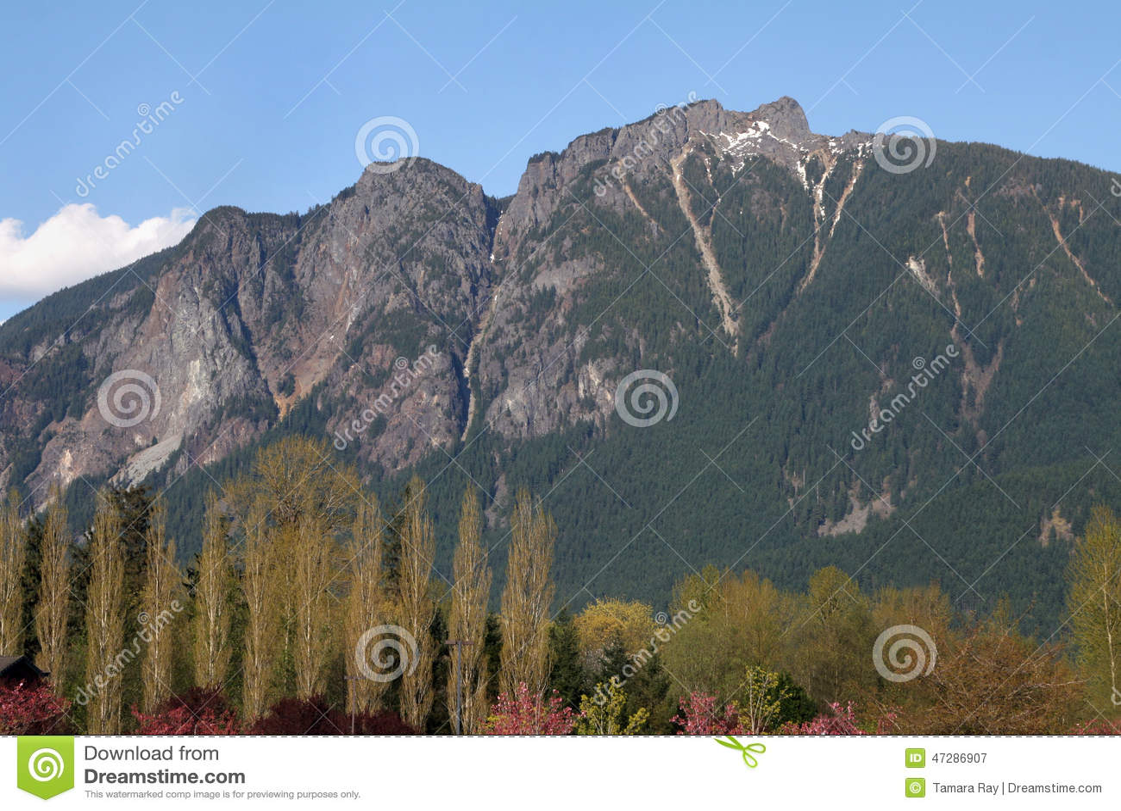 Zet Si, Washington State op