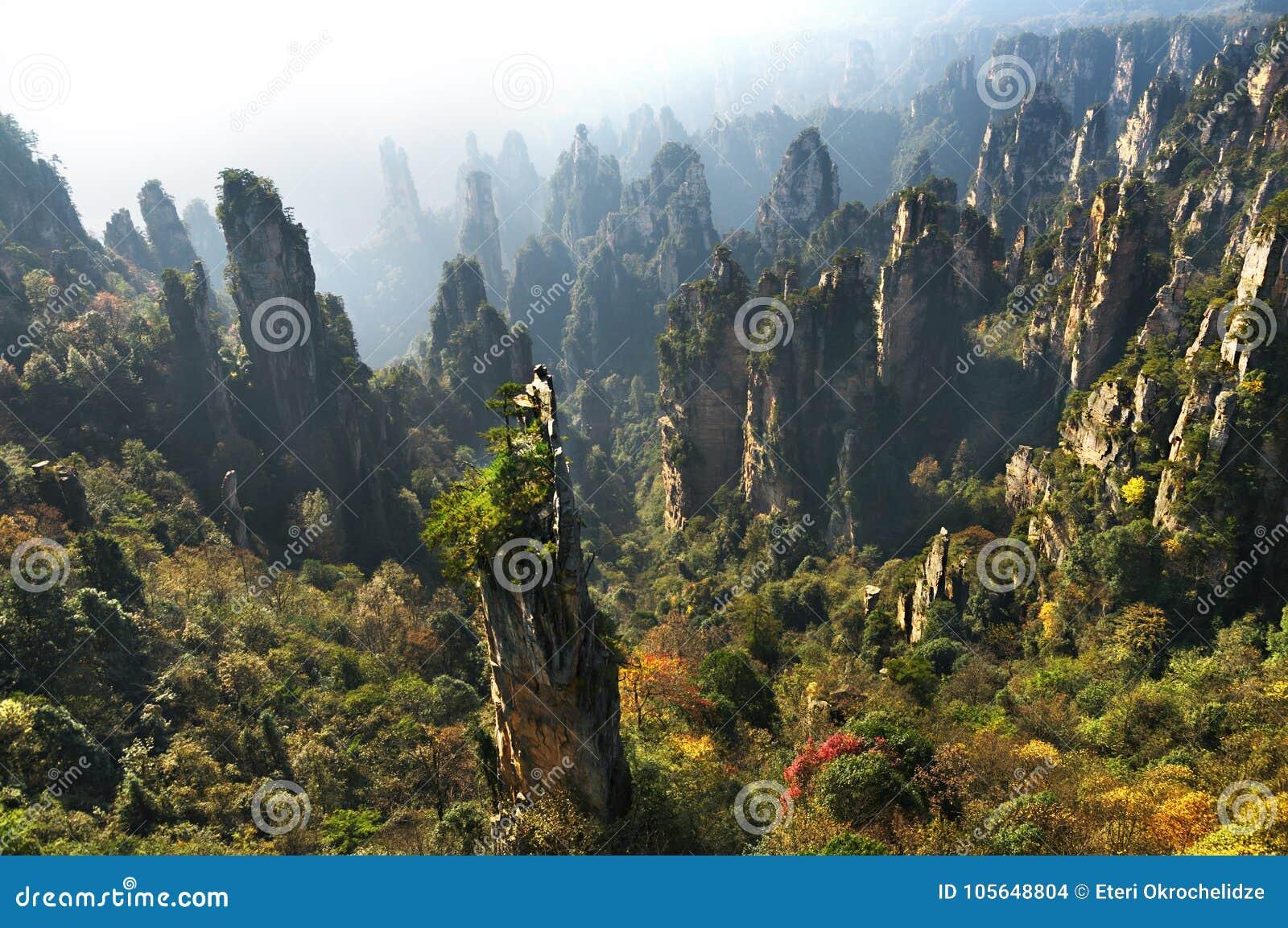 Zhangjiajie Forest Park Montanhas gigantescas da coluna que aumentam da garganta Montanha de Tianzi Província de Hunan, China