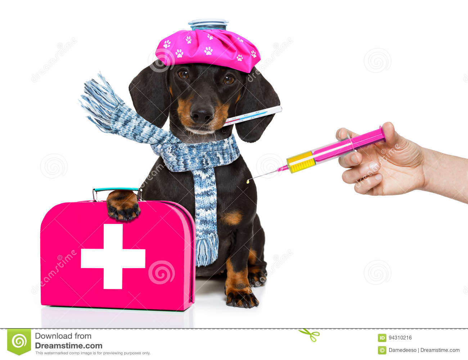 Zieke zieke hond met ziekte en vaccinspuit