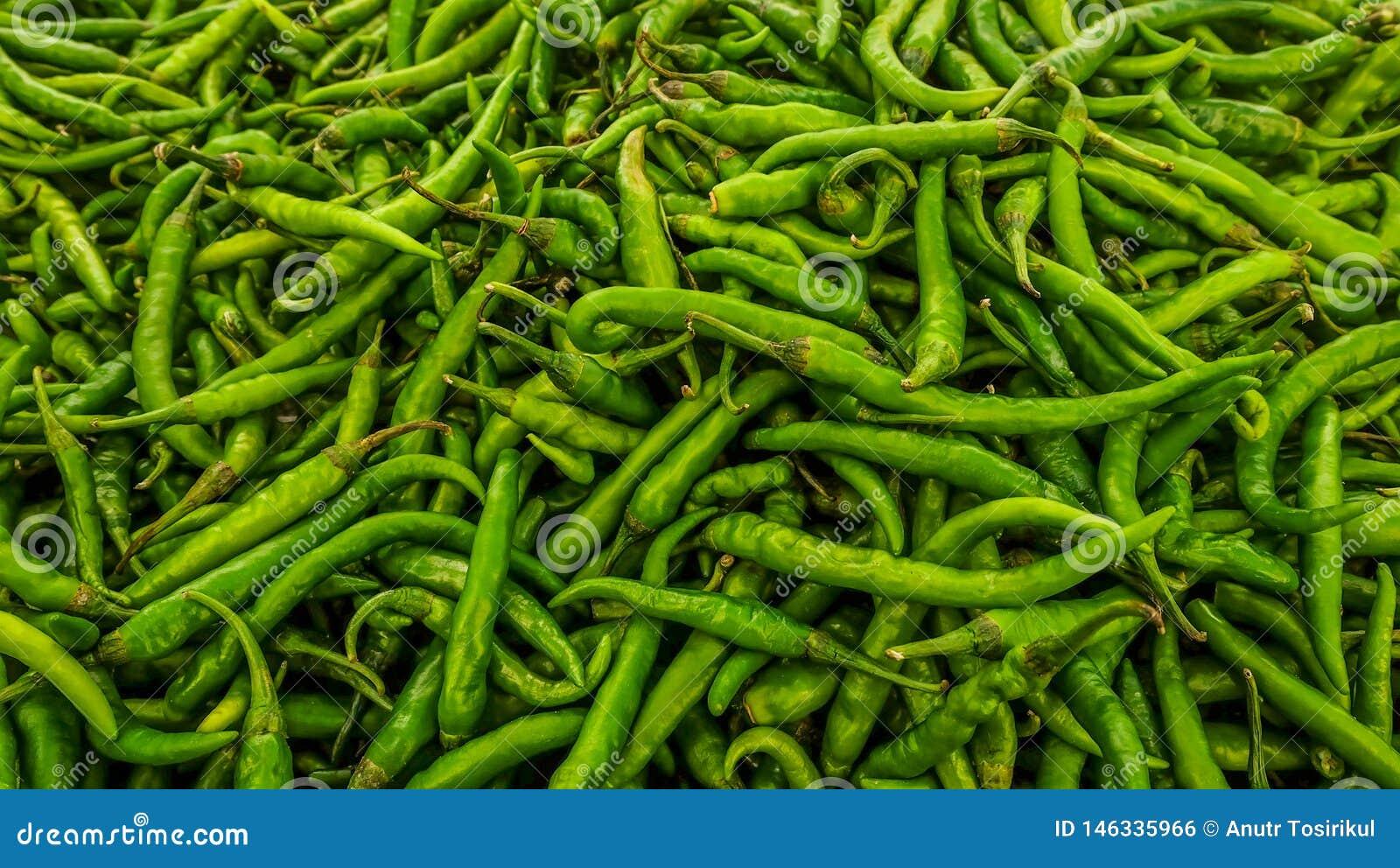 Zieleni chili pieprze w indianina rynku