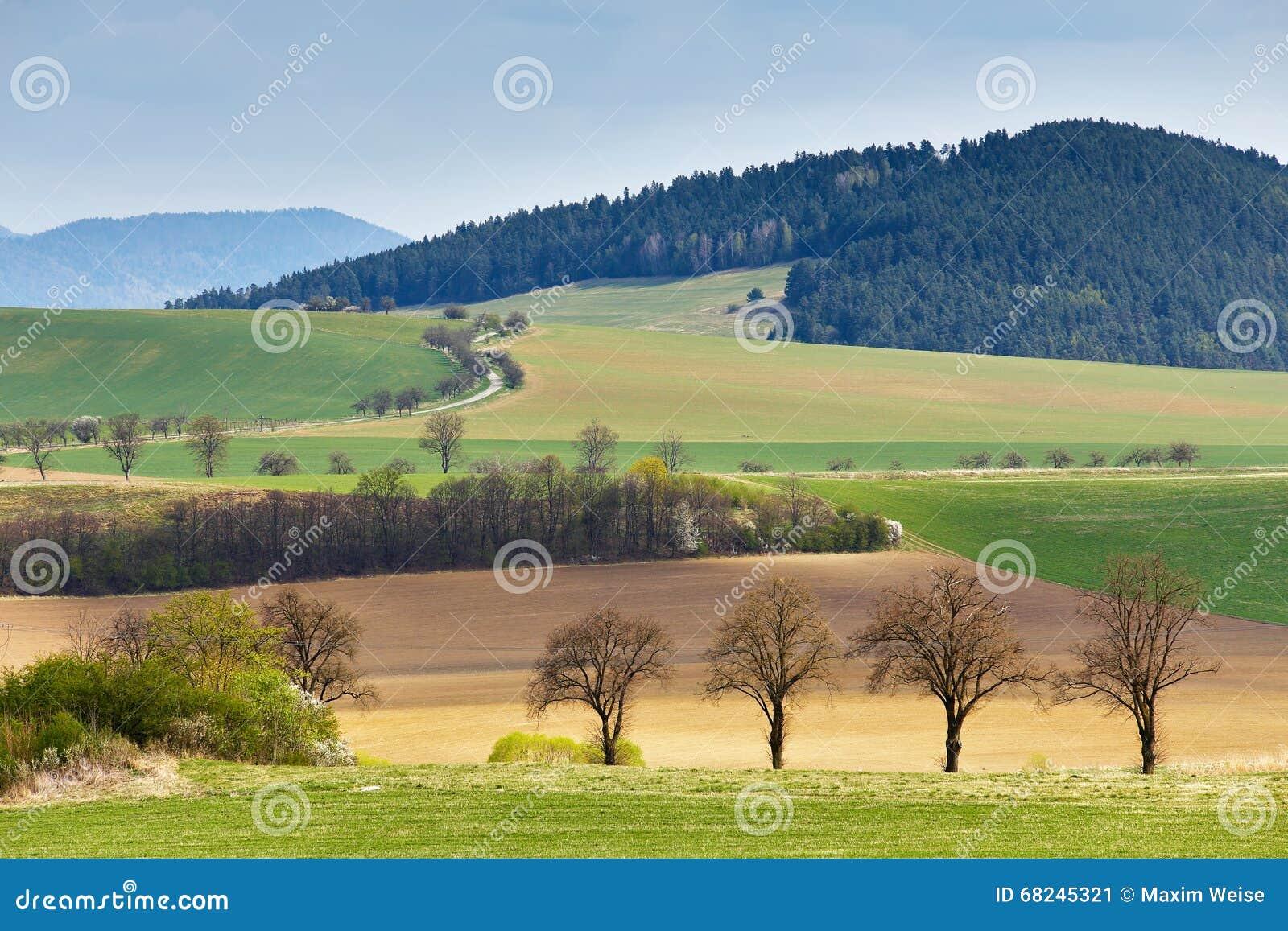 Zieleni wiosen wzgórza w Sistani Kwiecień pogodna wieś