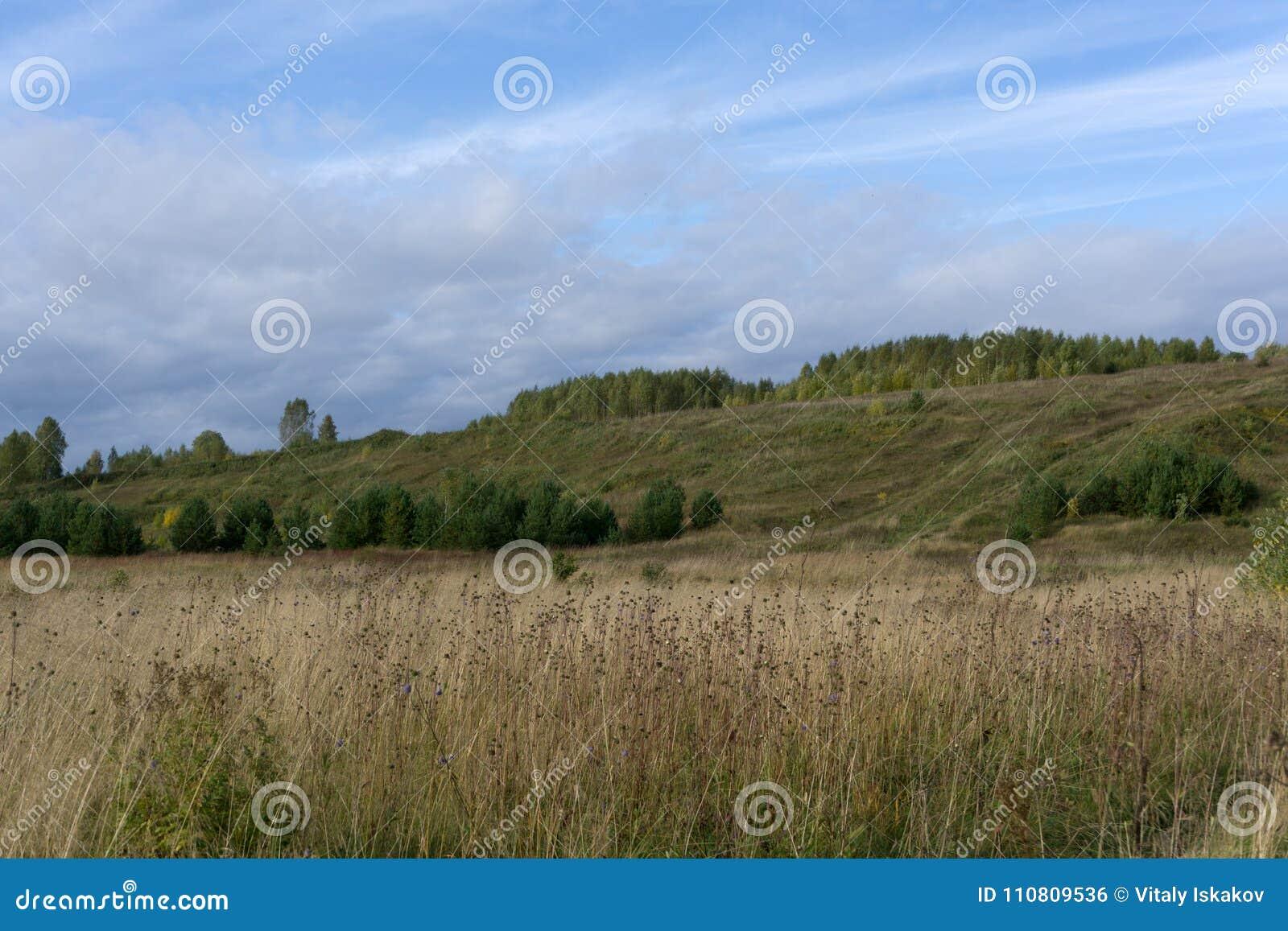 Zielona łąka na tle Krymskie góry