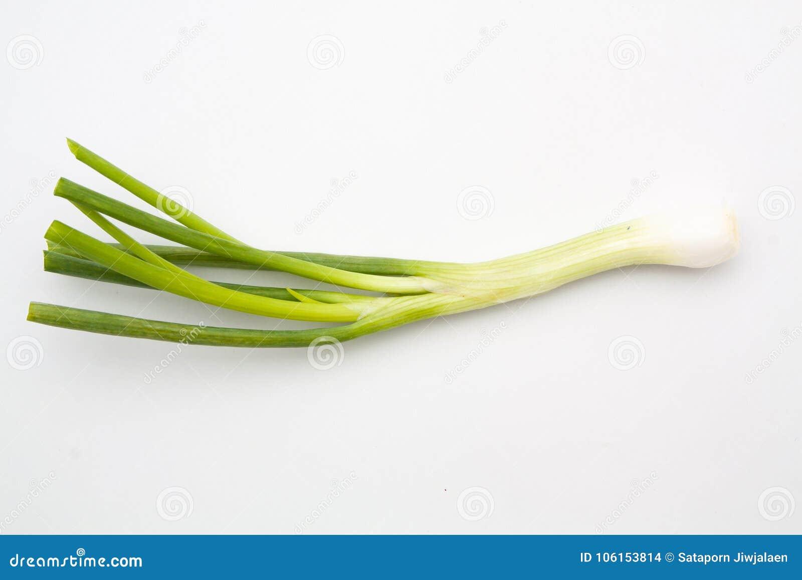 Zielona cebula