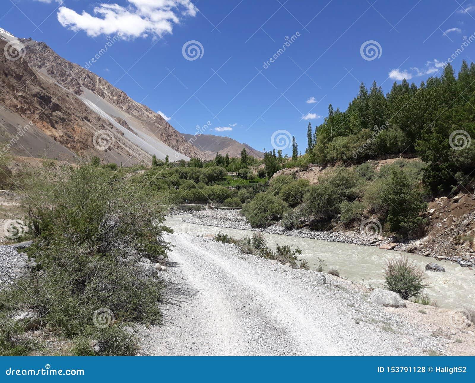 Zielona lasowa mała rzeka i piękny widok