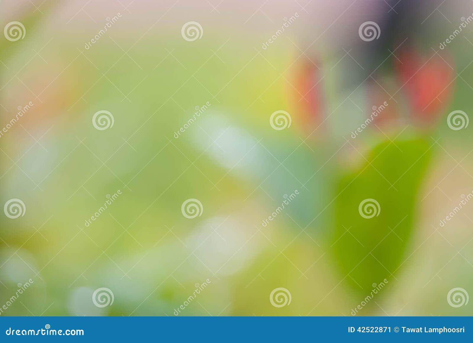 Zielona liścia bokeh plama