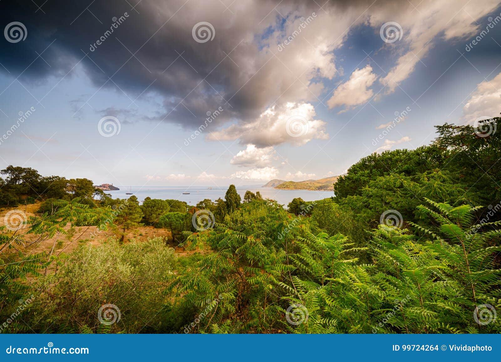 Zielona natura i błękity denni w Elba