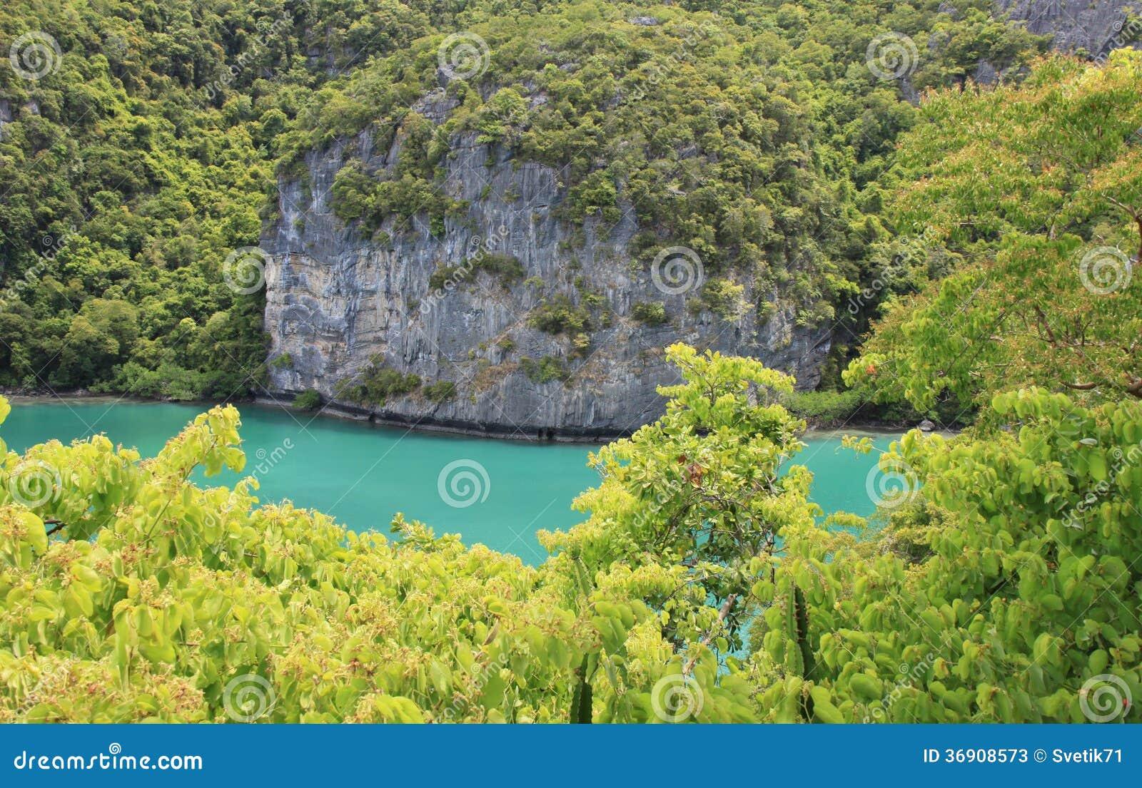 Zielona natura na dennym tle