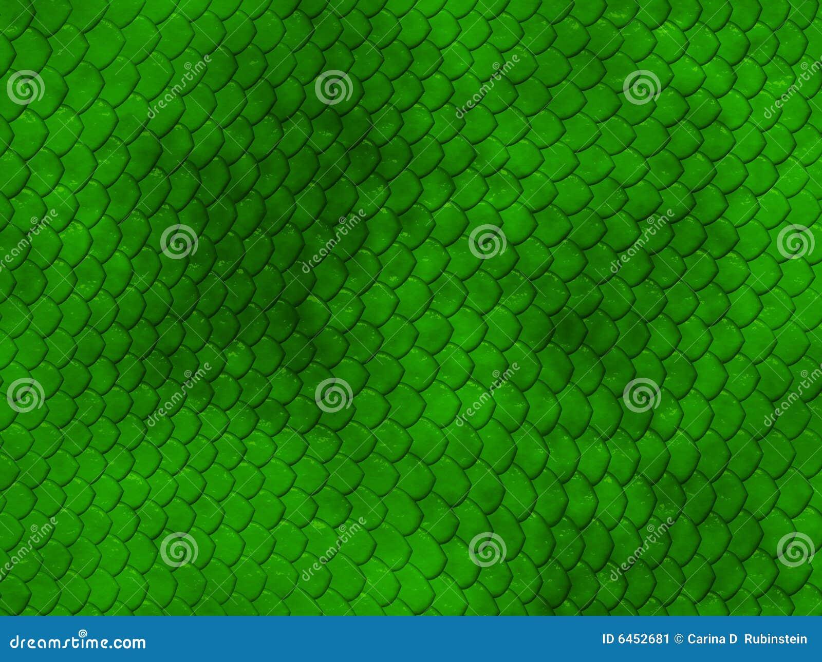 Zielona skóra węża konsystencja