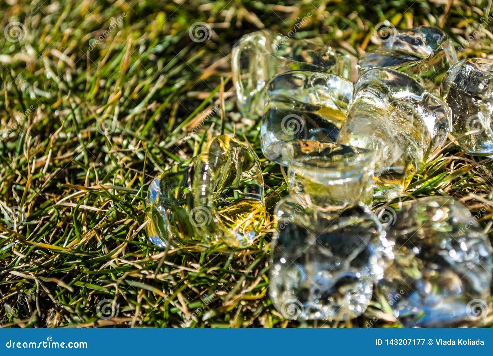 Zielona wiosny trawa na nim kostka lodu kłamstwo sunshine meadow gazon tło lub tekstura