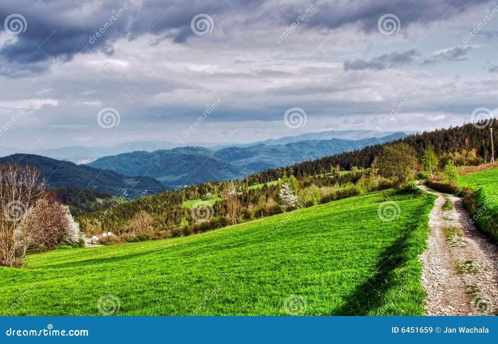 Zielone góry