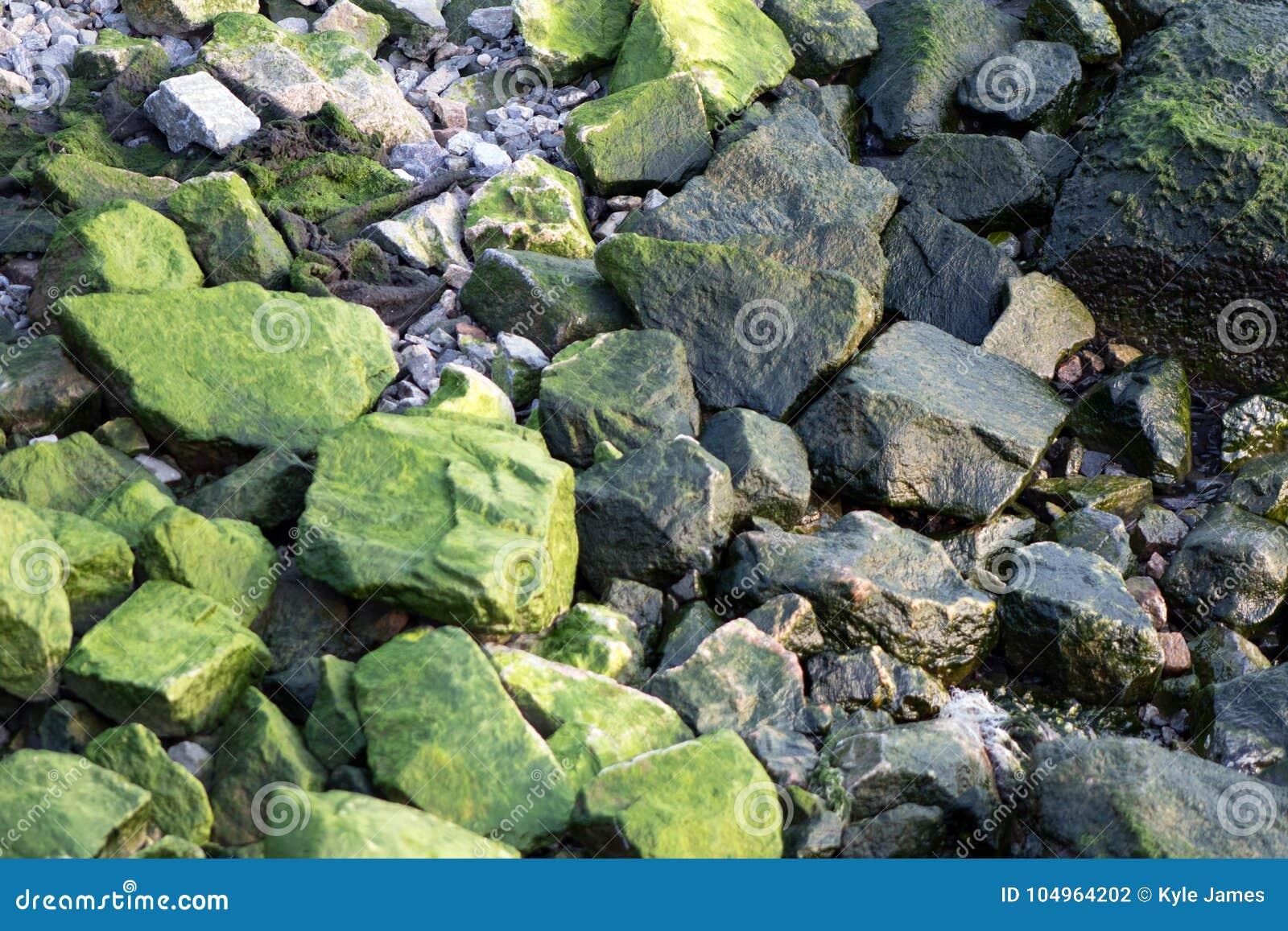 Zielone kamienie