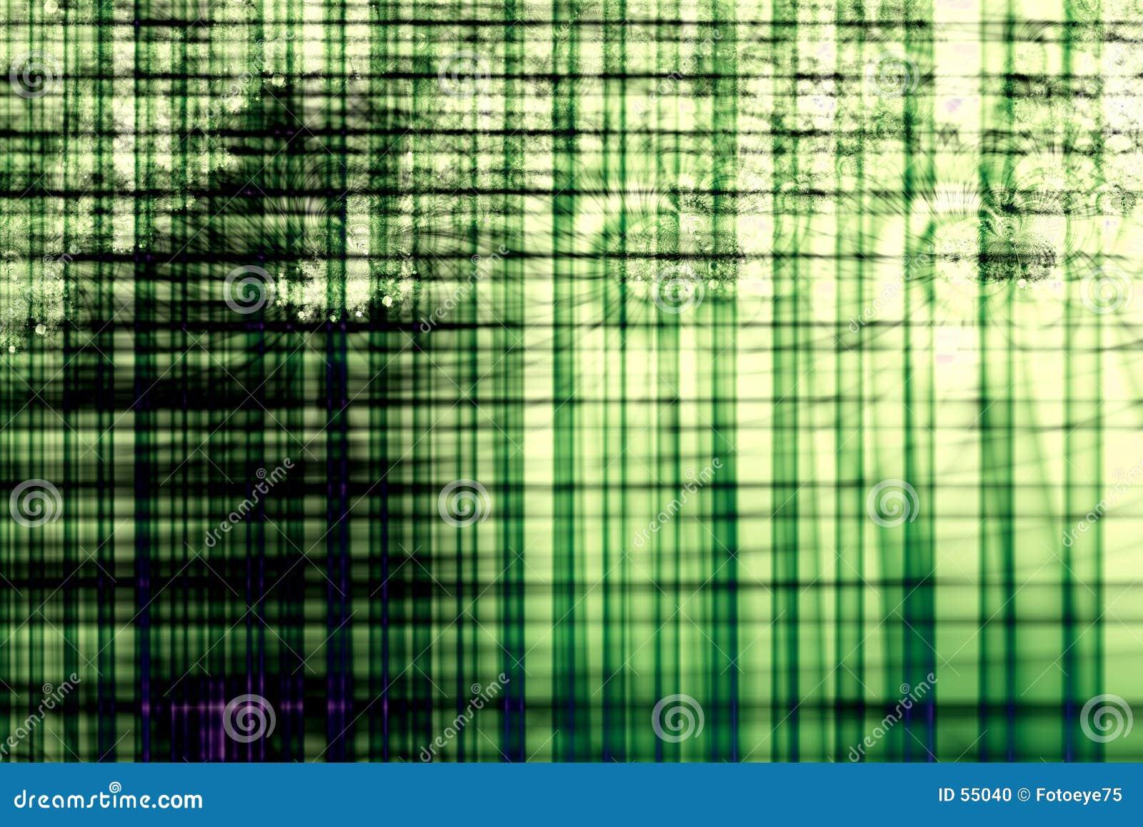 Zielone oczka