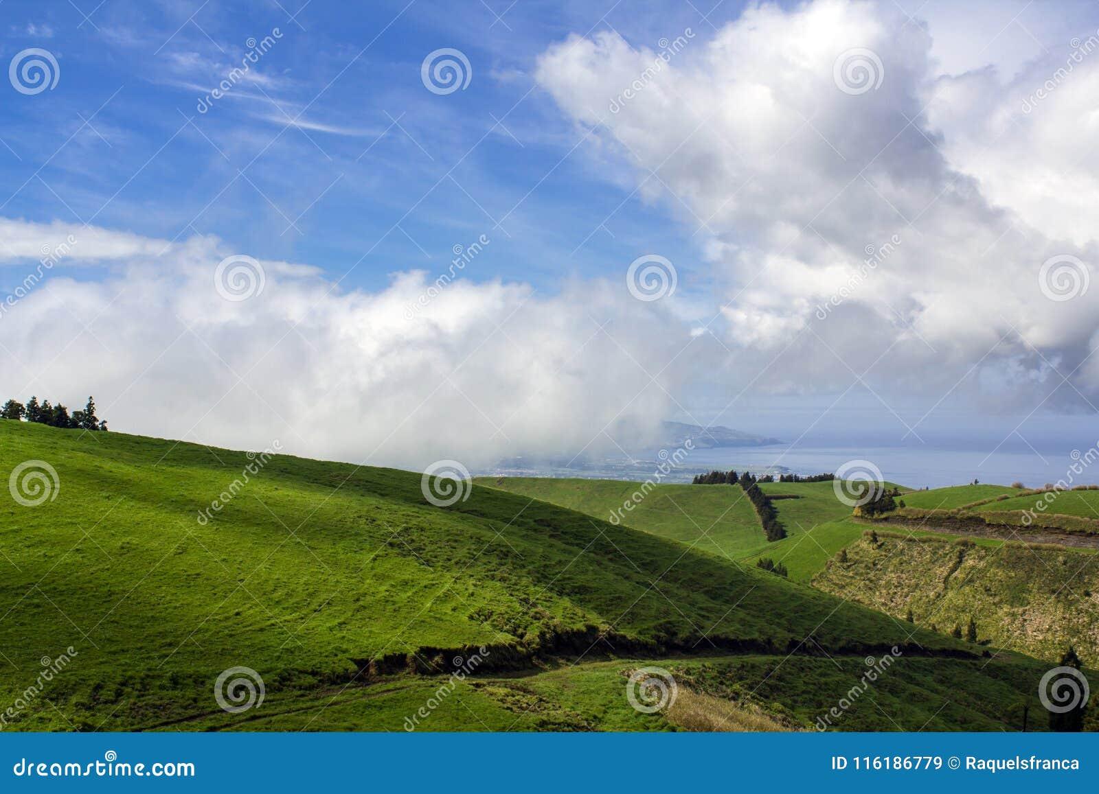 Zielonego wzgórza krajobrazu sceneria z breathtaking widokami nad horyzontem