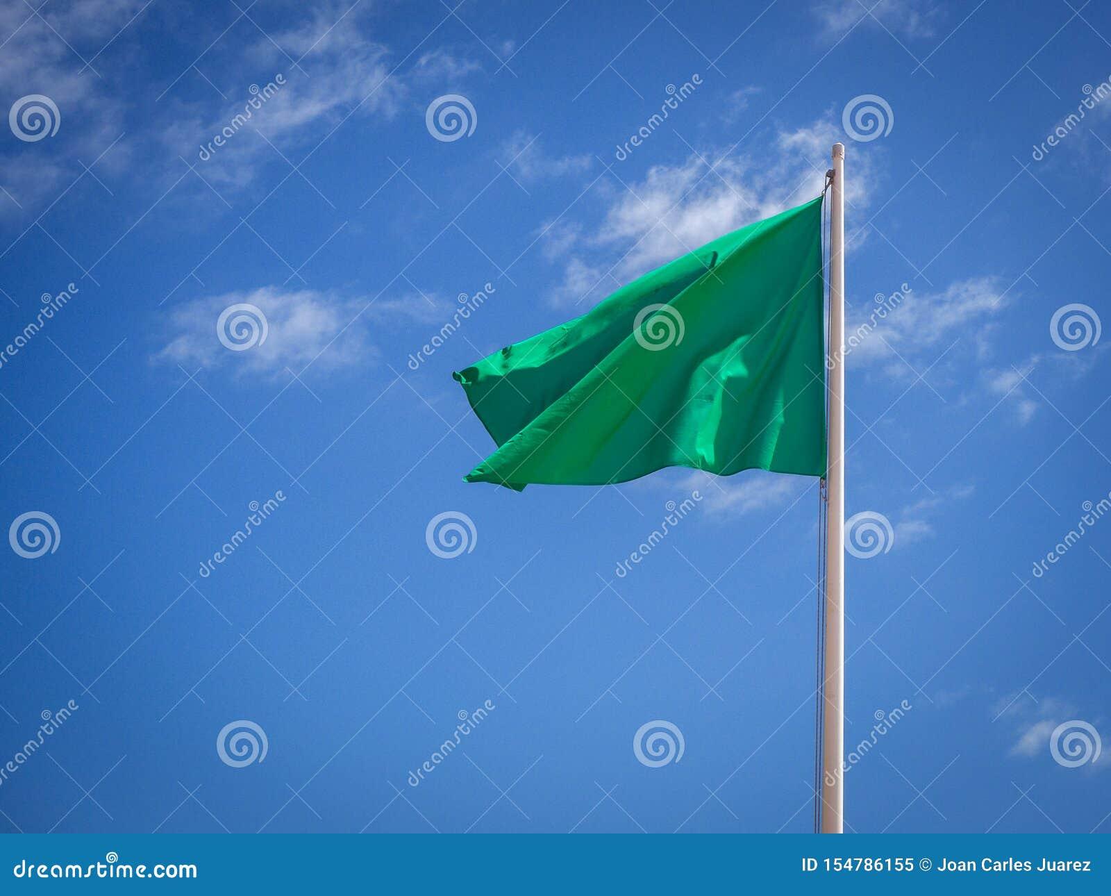 Zielonej flagi odosobniony falowanie