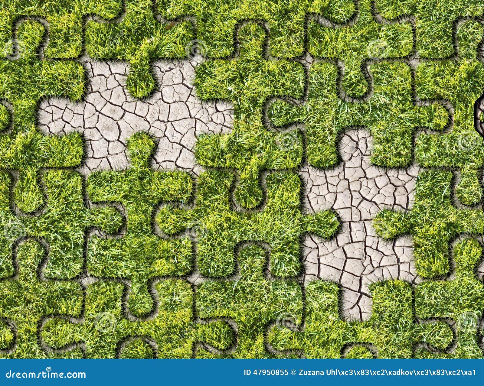 Zielonej trawy narastający odciski stopy na białym tle