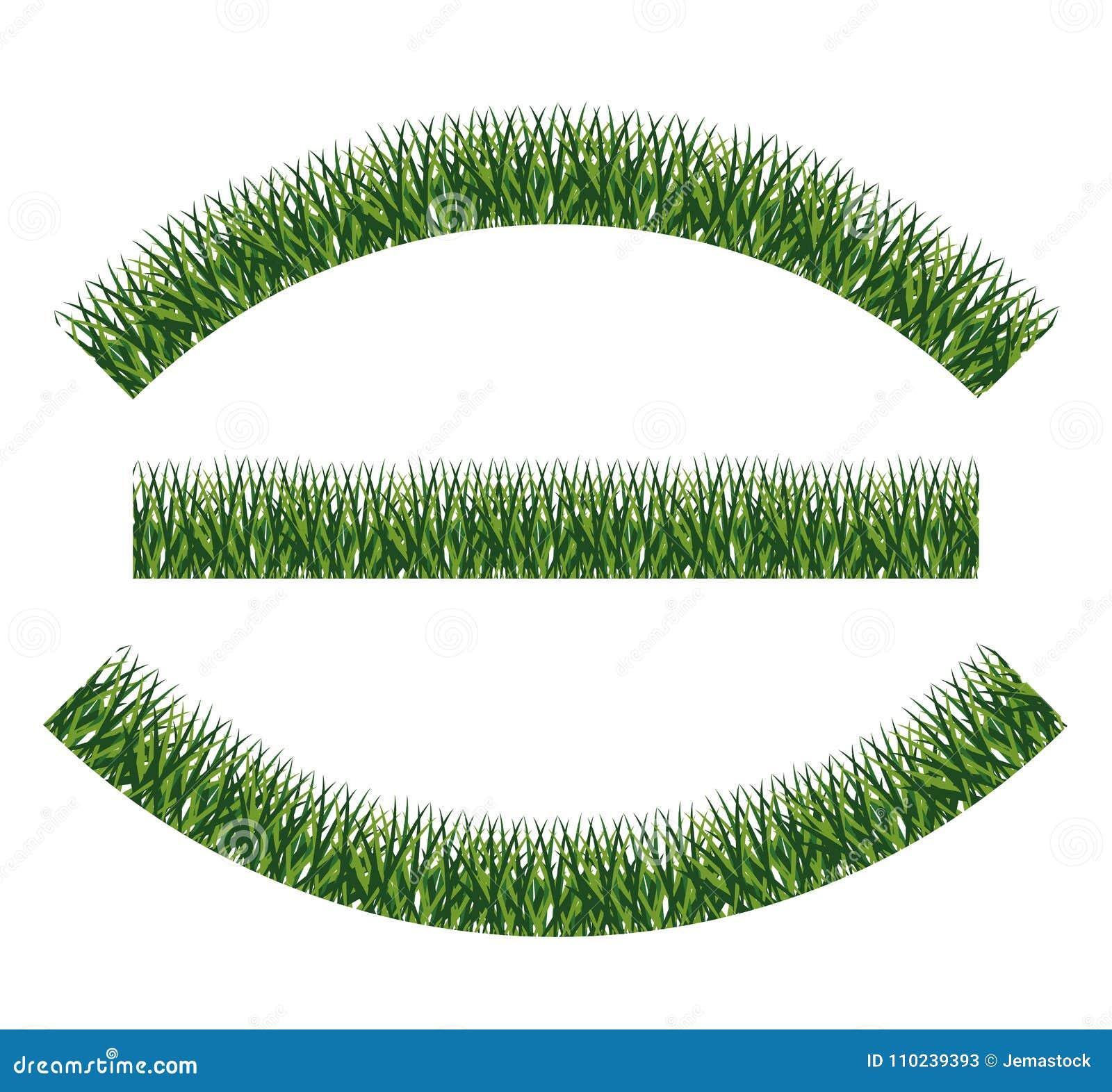 Zielonej trawy rośliny projekt