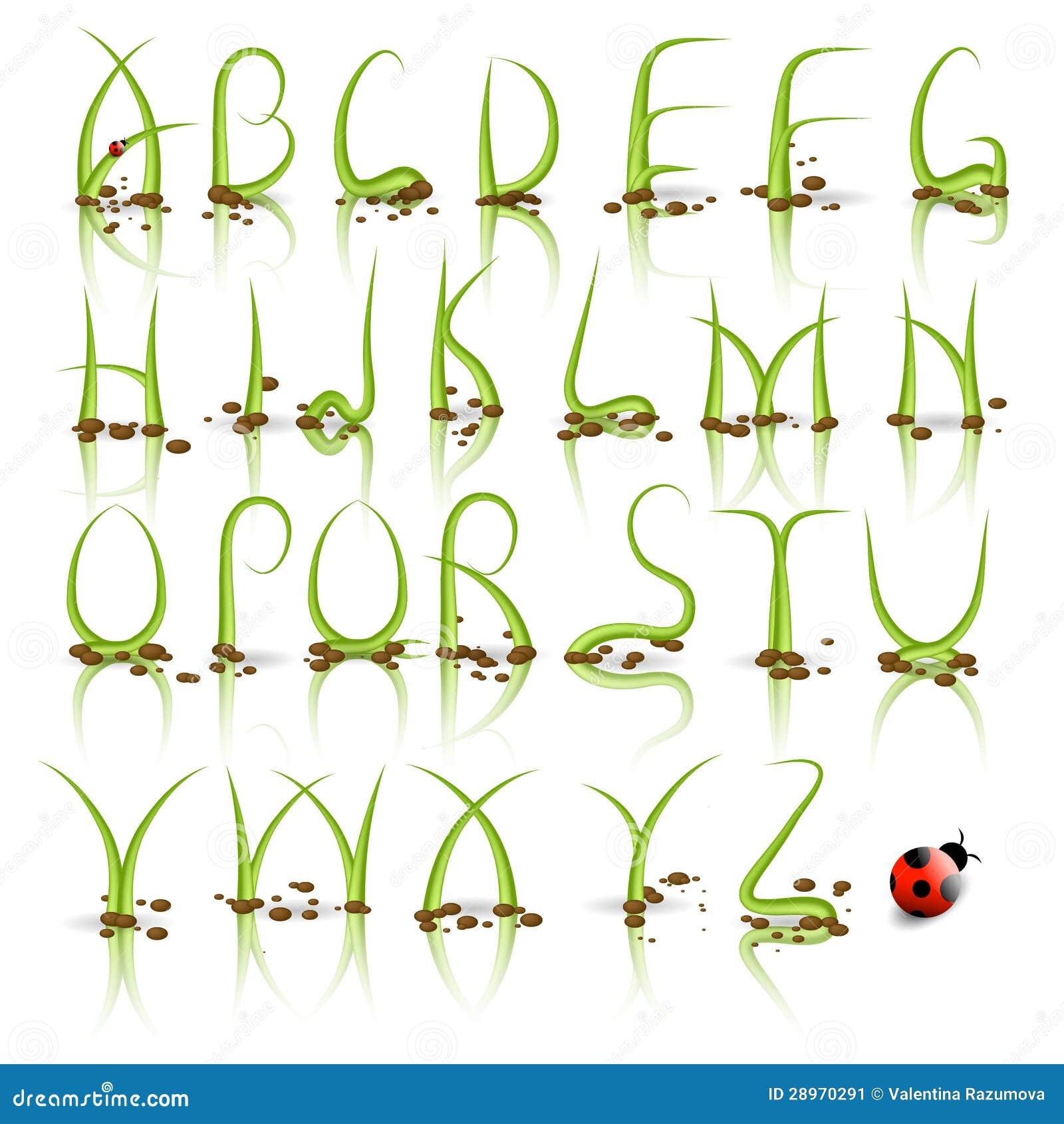 Zielonej trawy wektoru abecadło