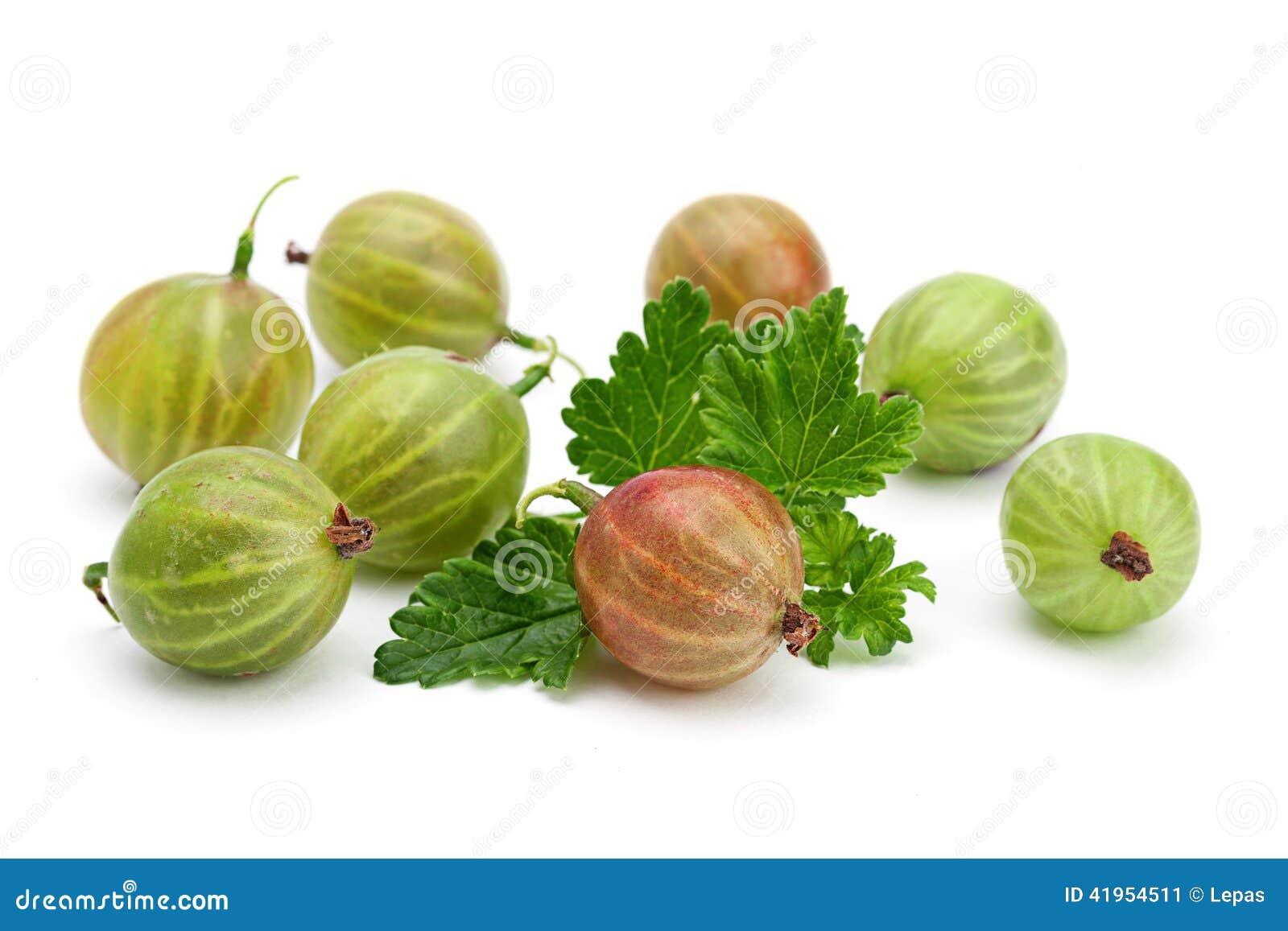 Zielony agrest z liściem