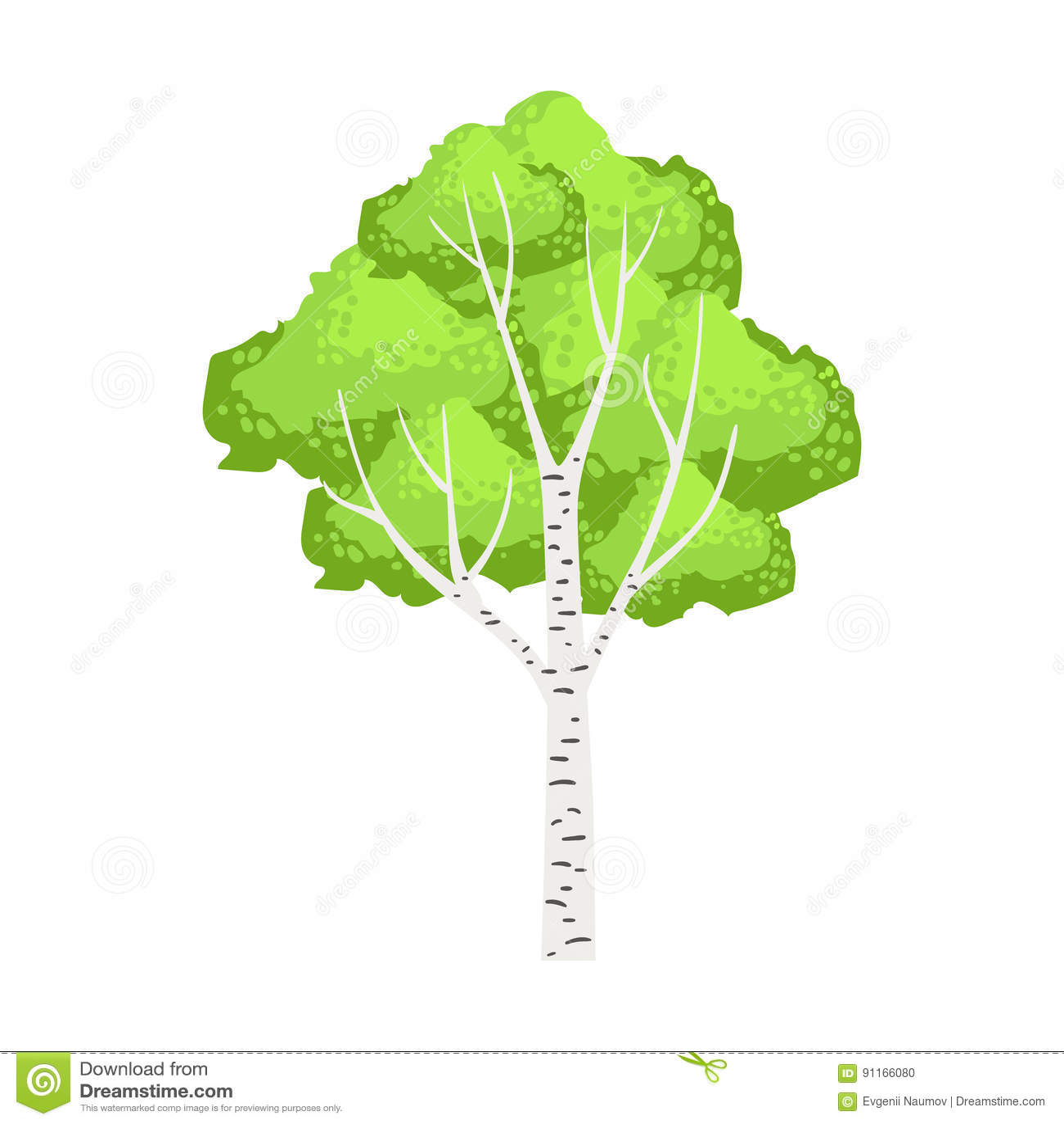 Zielony brzozy drzewo Kolorowa kreskówka wektoru ilustracja