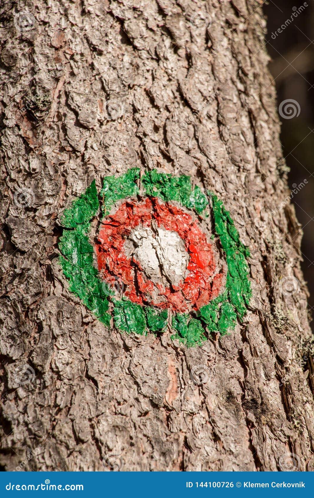 Zielony czerwony blask na śladzie