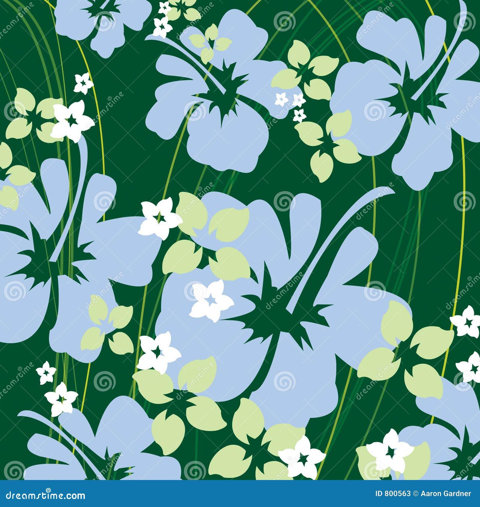 Zielony hibiskus
