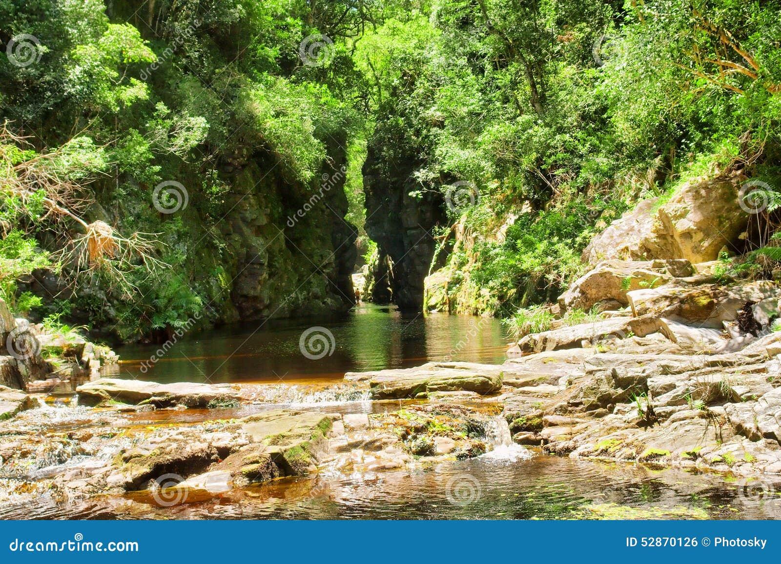 Zielony jar z wody rzeką