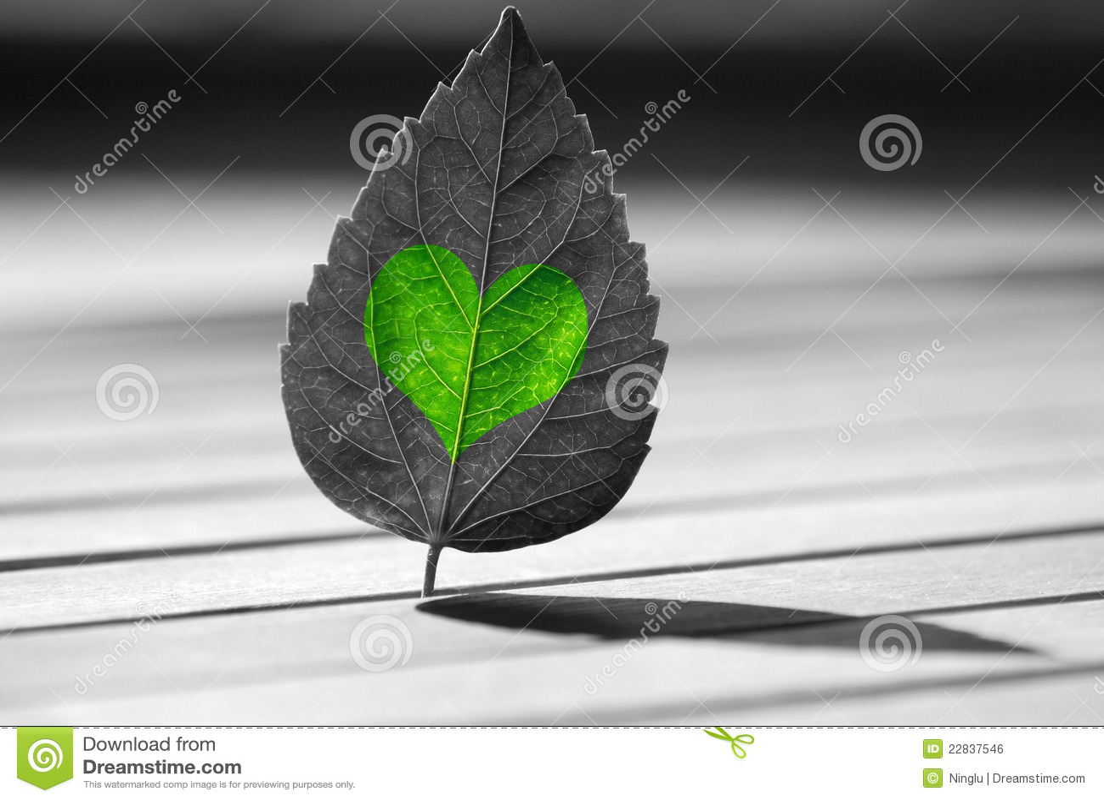 Zielony kierowy liść kształtował