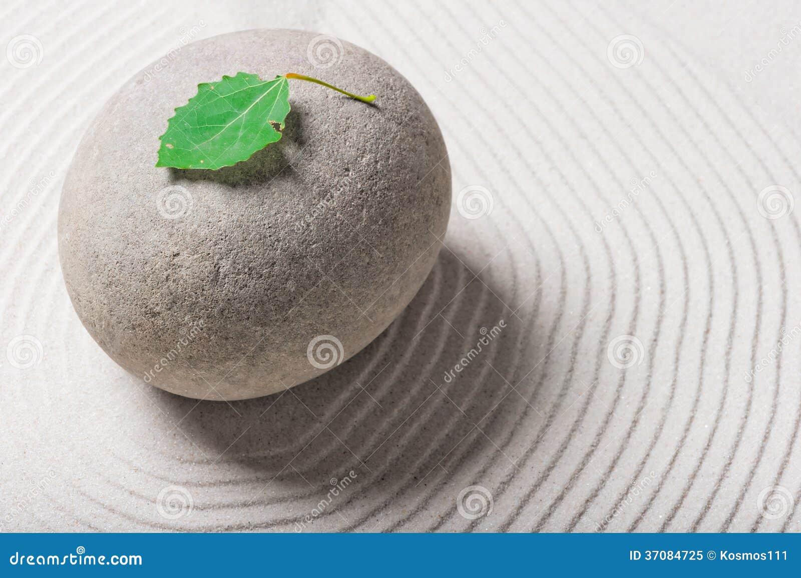 Download Zielony Liść Na Szarym Ampuła Kamieniu Obraz Stock - Obraz złożonej z otoczak, kontemplacja: 37084725